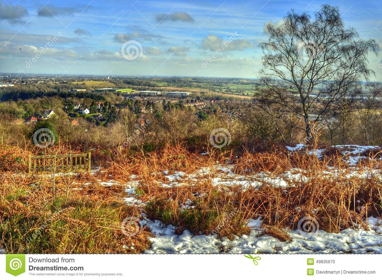 Forest And Heathland Stock Photo 78367590
