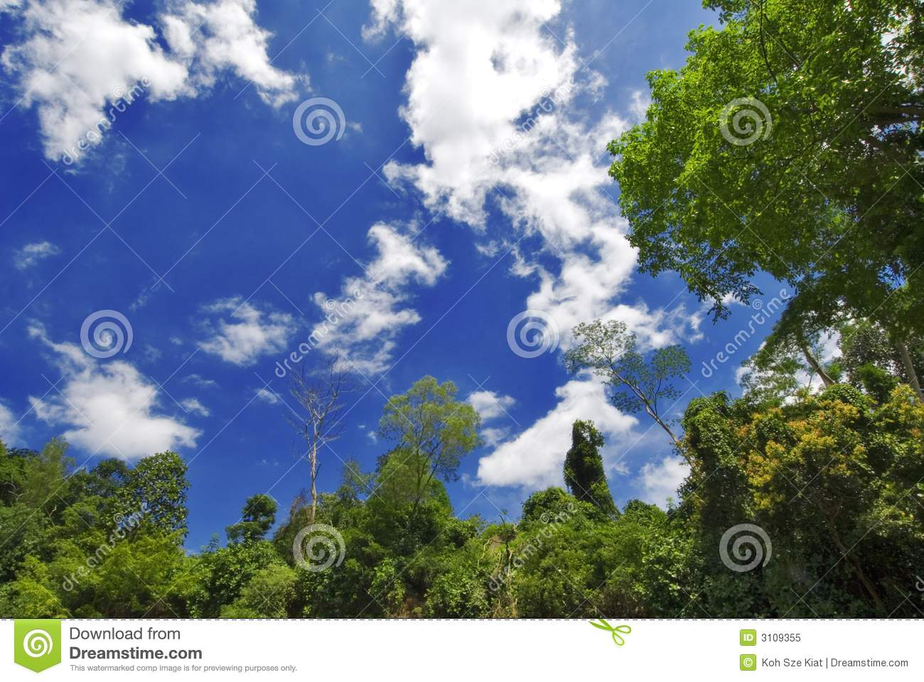 Heaven And Earth Royalty Free Stock Photo - Image: 3109355