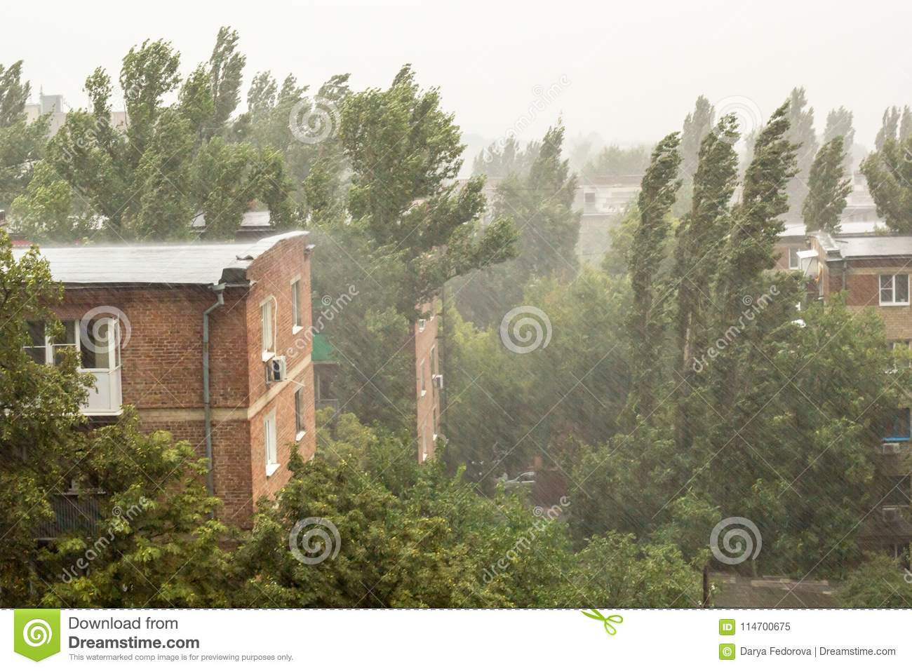 Heavy Rain Trees Wire And Residential House In The Village Stock Wiring A Download Image