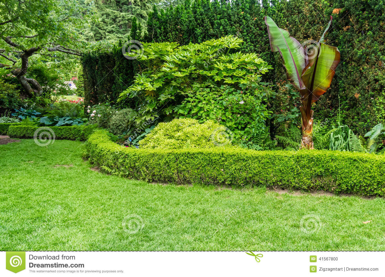 Hecke Und Gepflanztes Bett In Einem Garten Stockfoto Bild