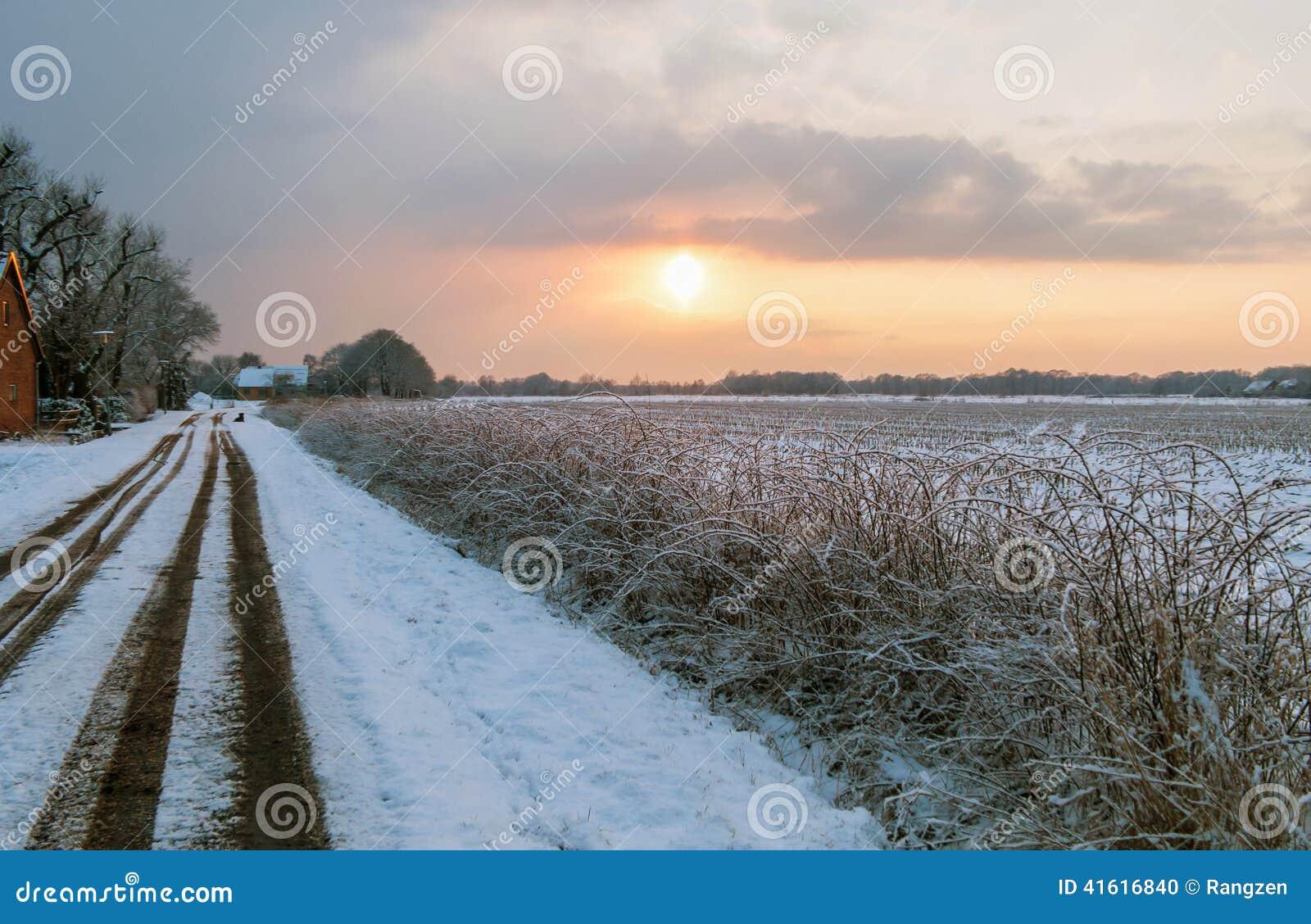 Hed i vinter