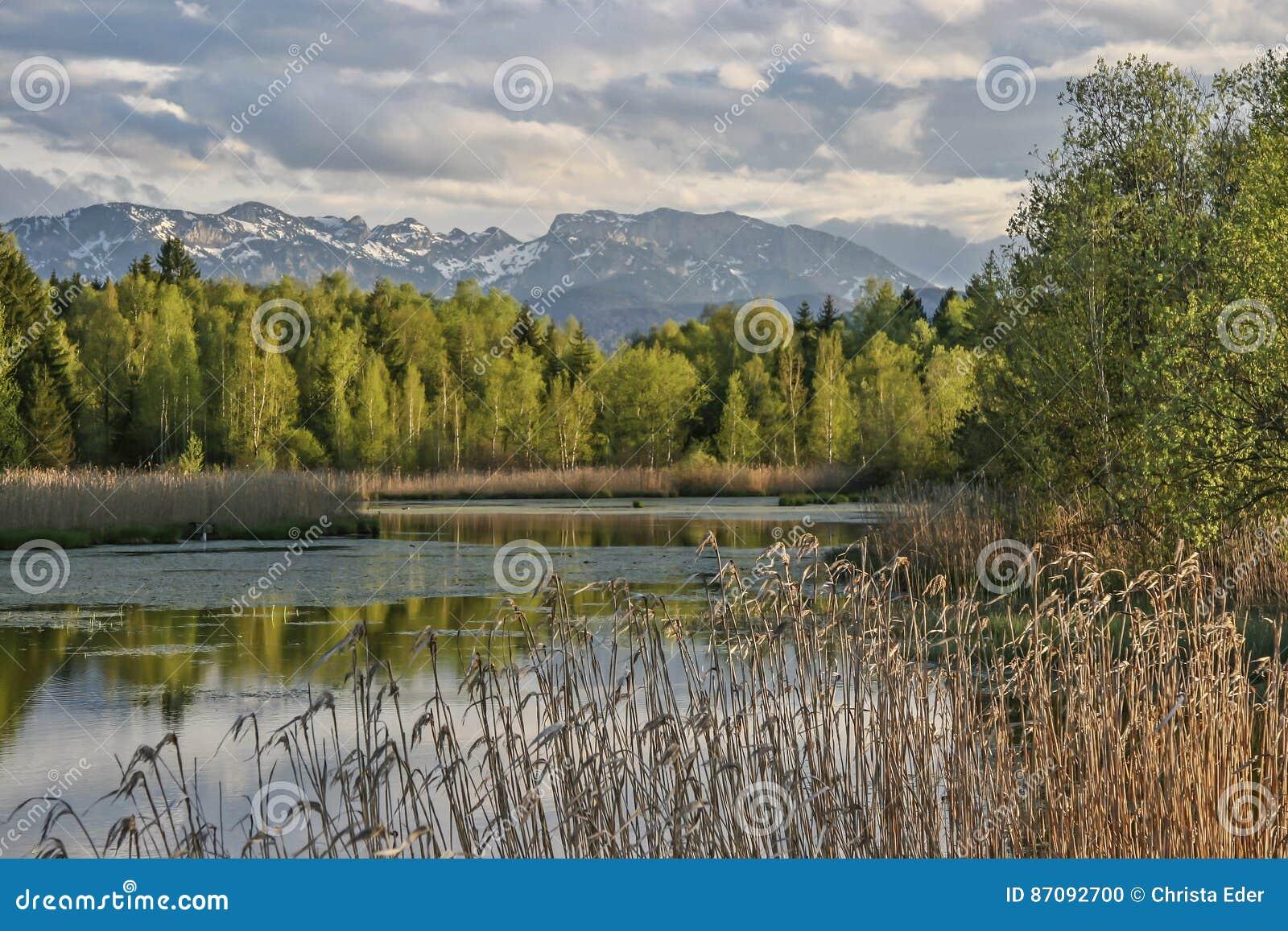 Hed sjö i dåliga Toelz