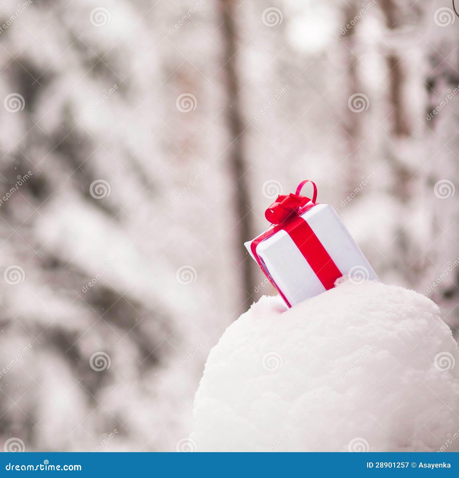 Heden in sneeuwdecoratie