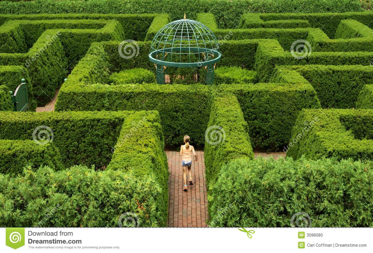 Hedge Maze A stock photo. Image of challenge, youth, manicured - 3096080