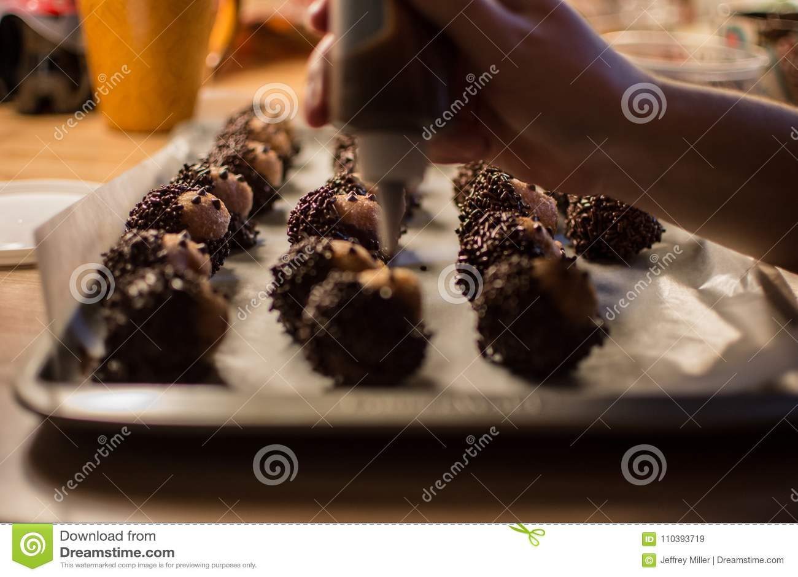 Chocolate Sprinkles On Hedgehog Doughnut Holes For A Party