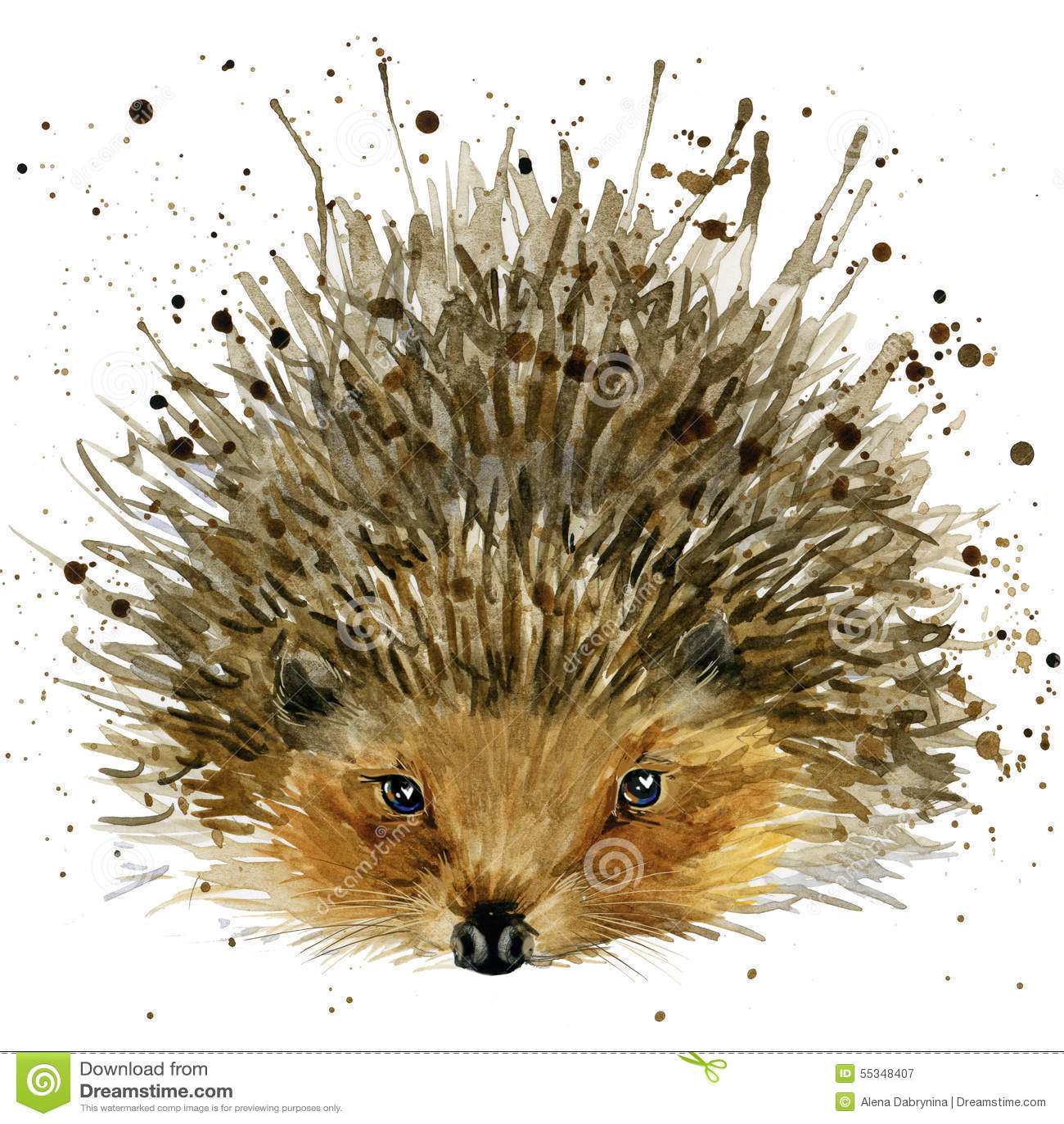 Hedgehog illustration with splash watercolor textured background