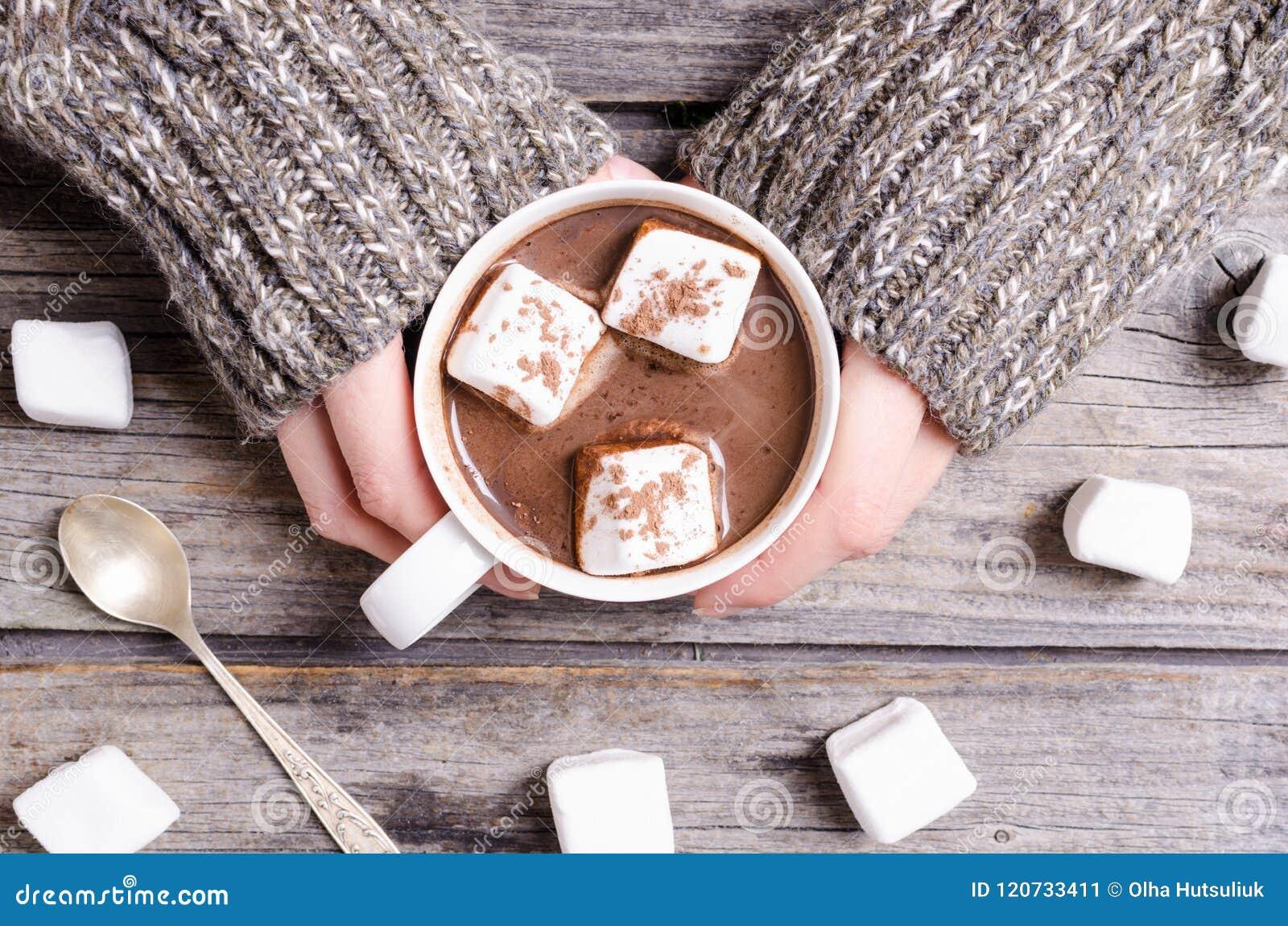 Heiße Schokolade mit Eibisch in der Frauenhand