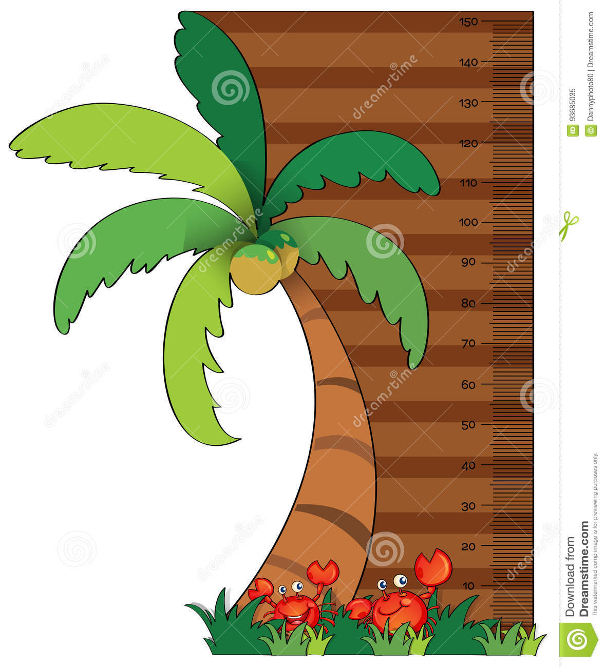Height measurement chart with coconut tree