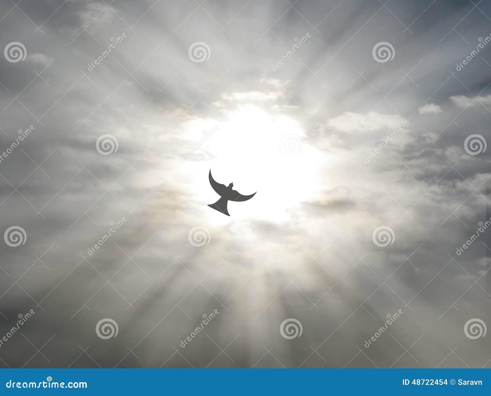 Heiliger Geist Ostern Friedenstaubenfliegen durch Offenen Himmel bewölkt sich mit Sonnenstrahlen