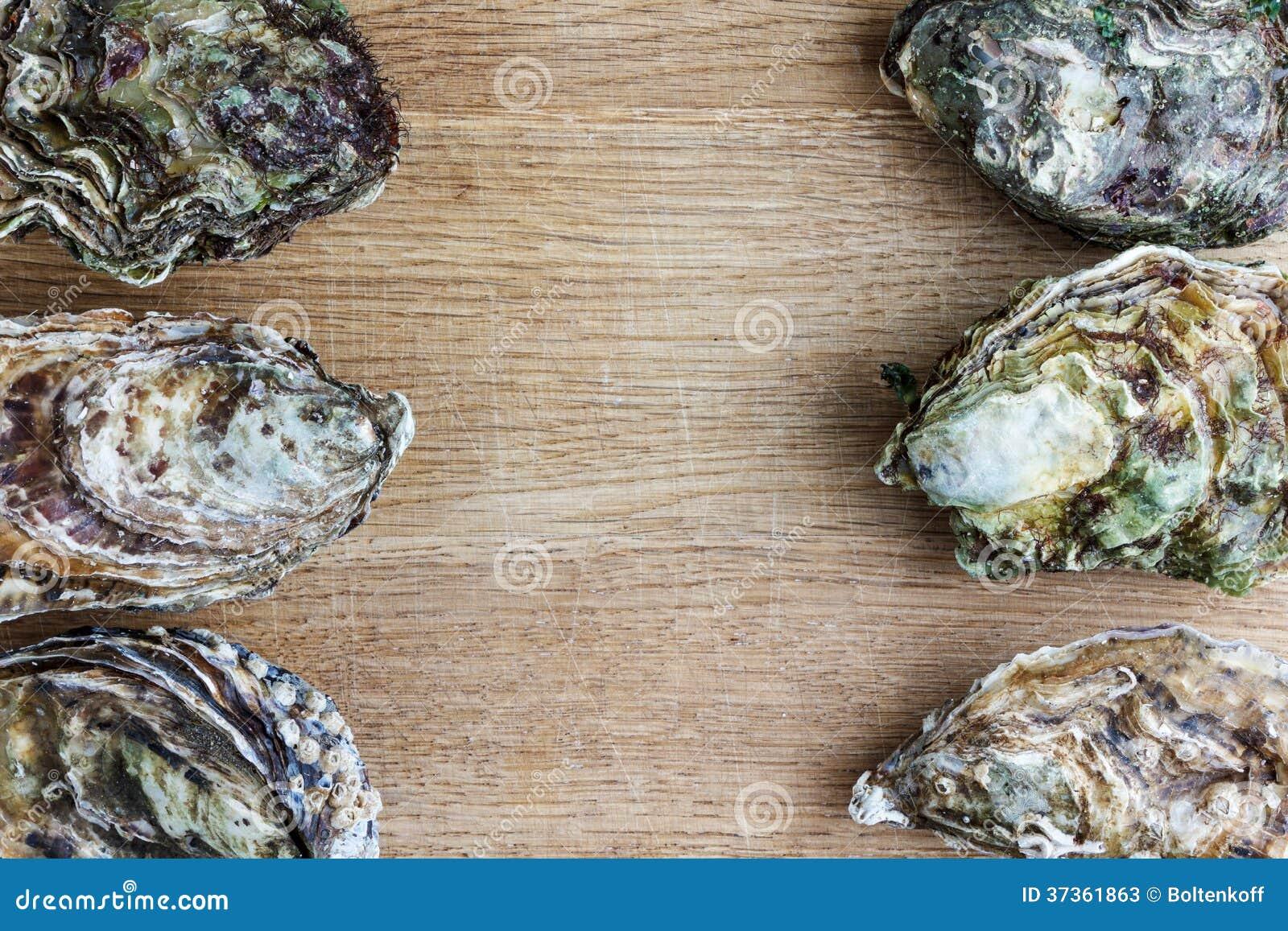 Hela ostron på trä