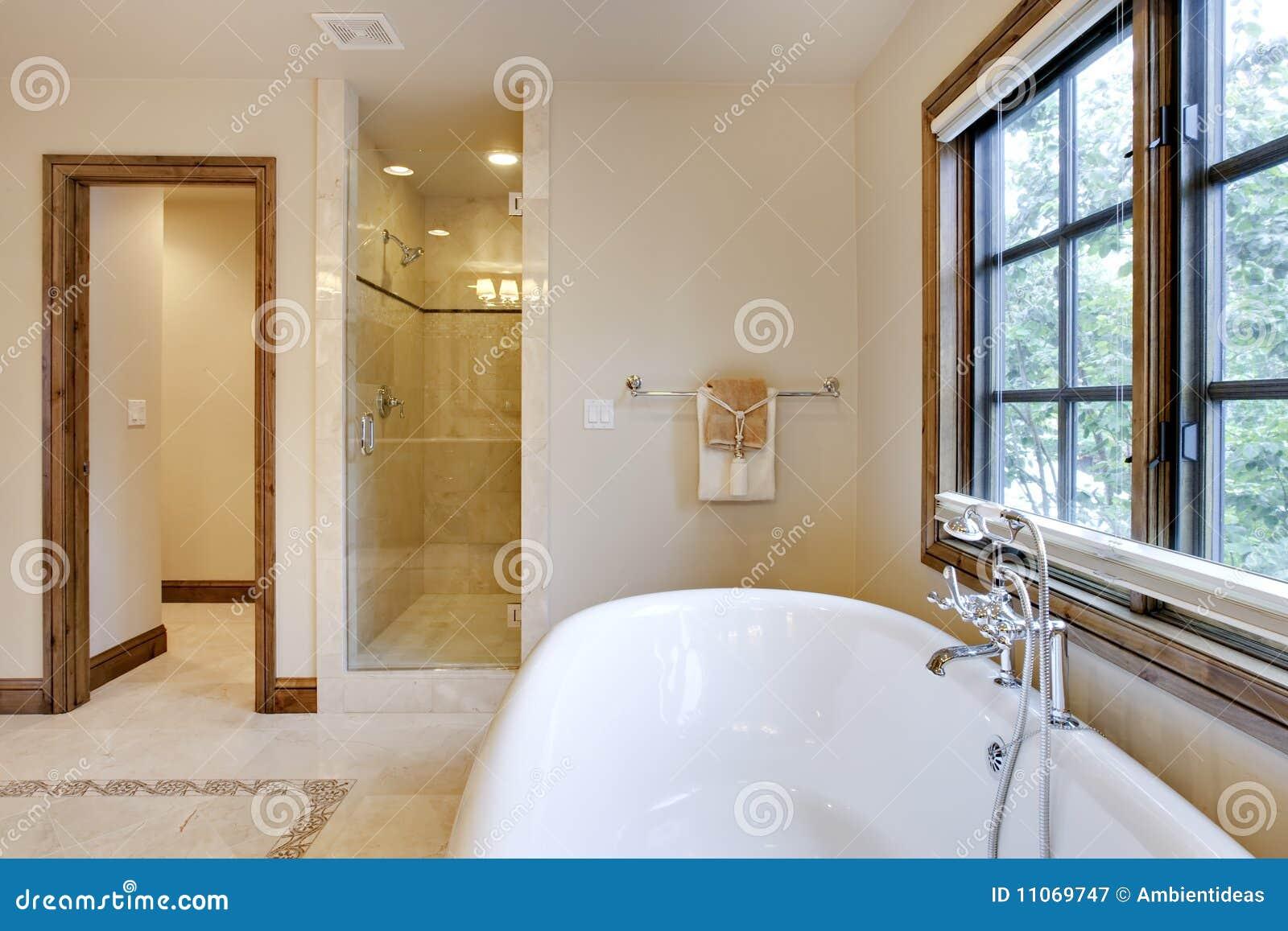 Helder het gebied van de ton en van de douche van het bad van lit