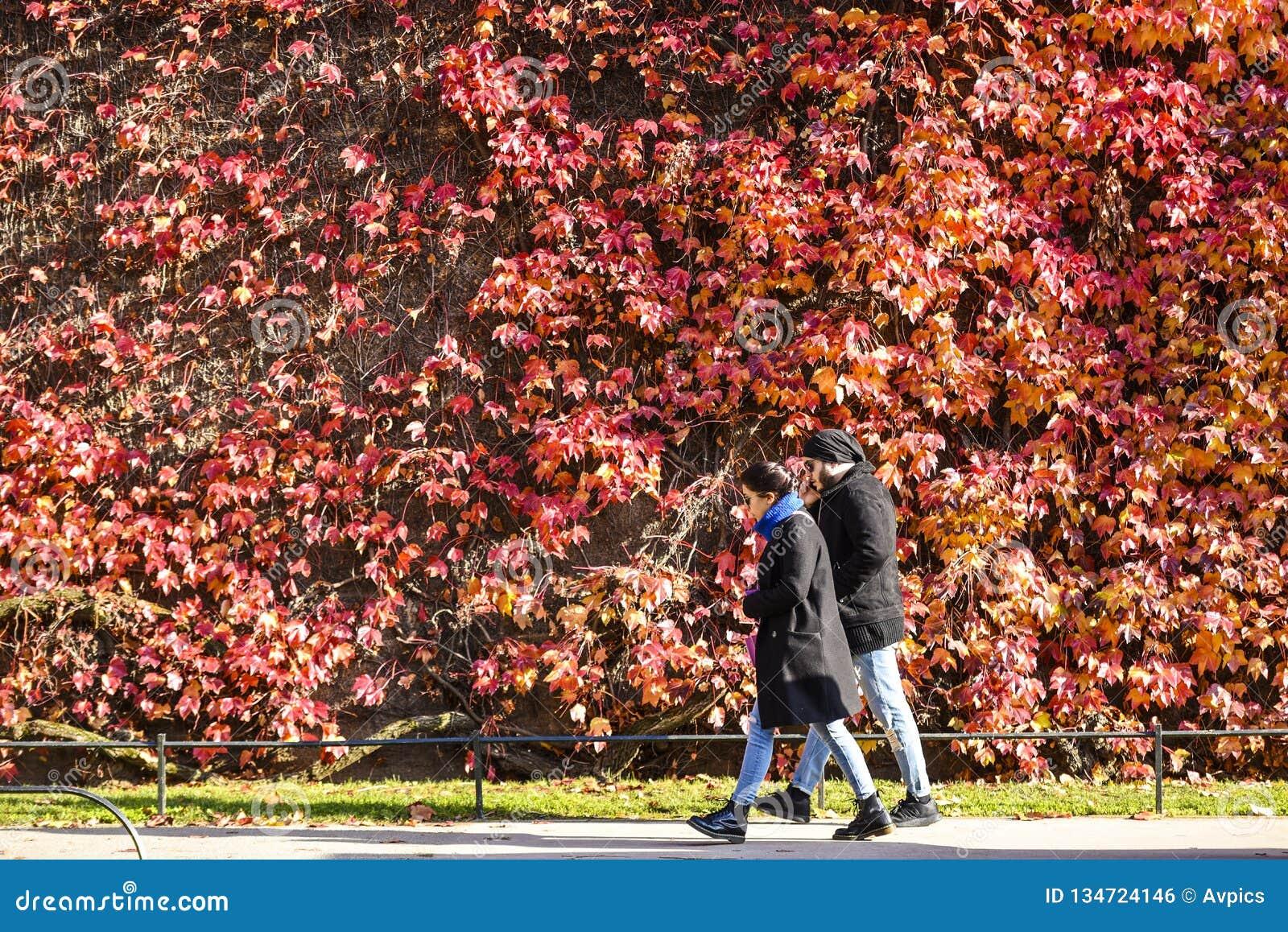 Helder zonnig weer in Londen met de Herfstkleuren