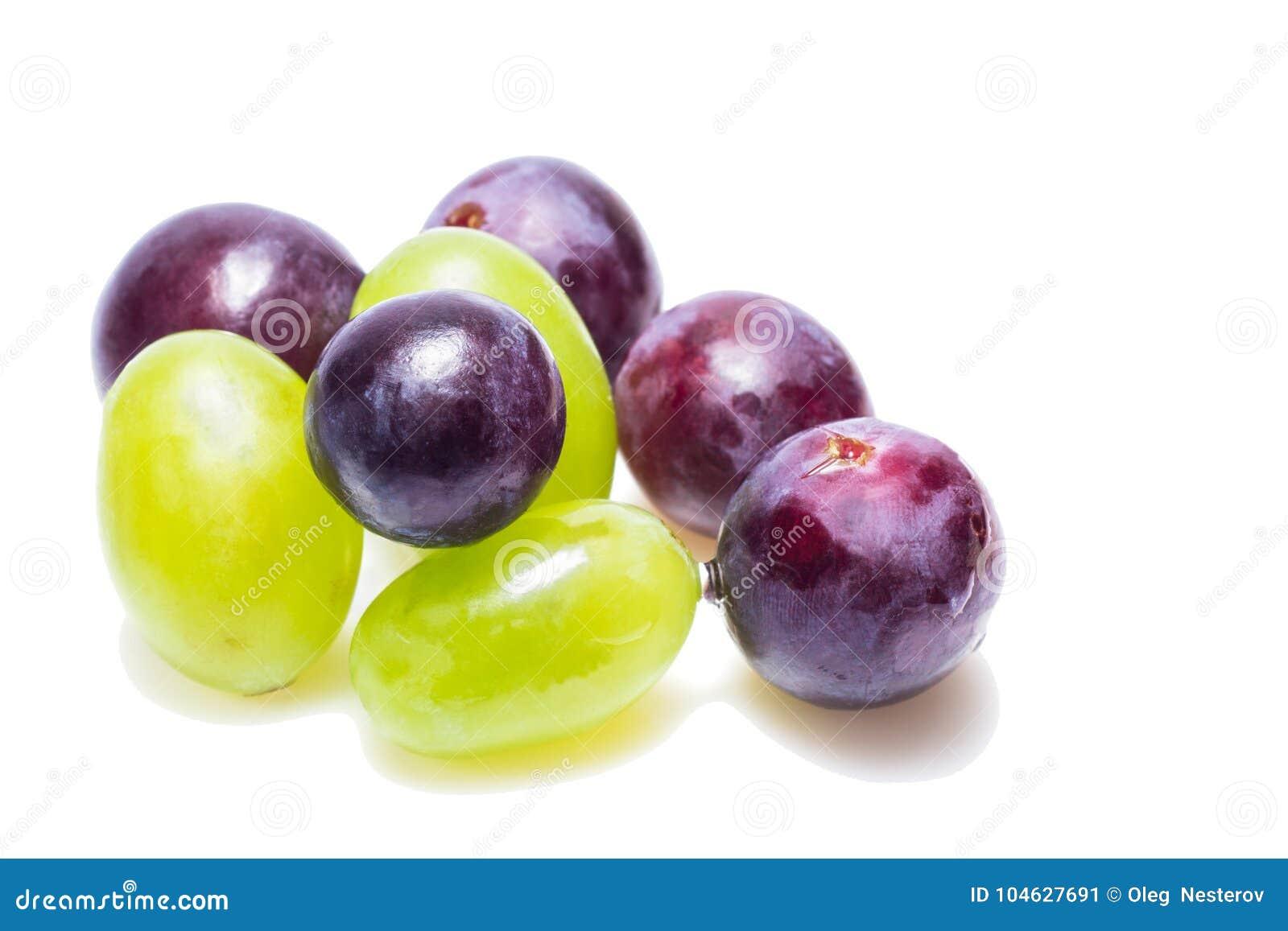 Download Heldere Druiven Van Heldere Verscheidenheden Op Een Witte Achtergrond Stock Afbeelding - Afbeelding bestaande uit druiven, blauw: 104627691