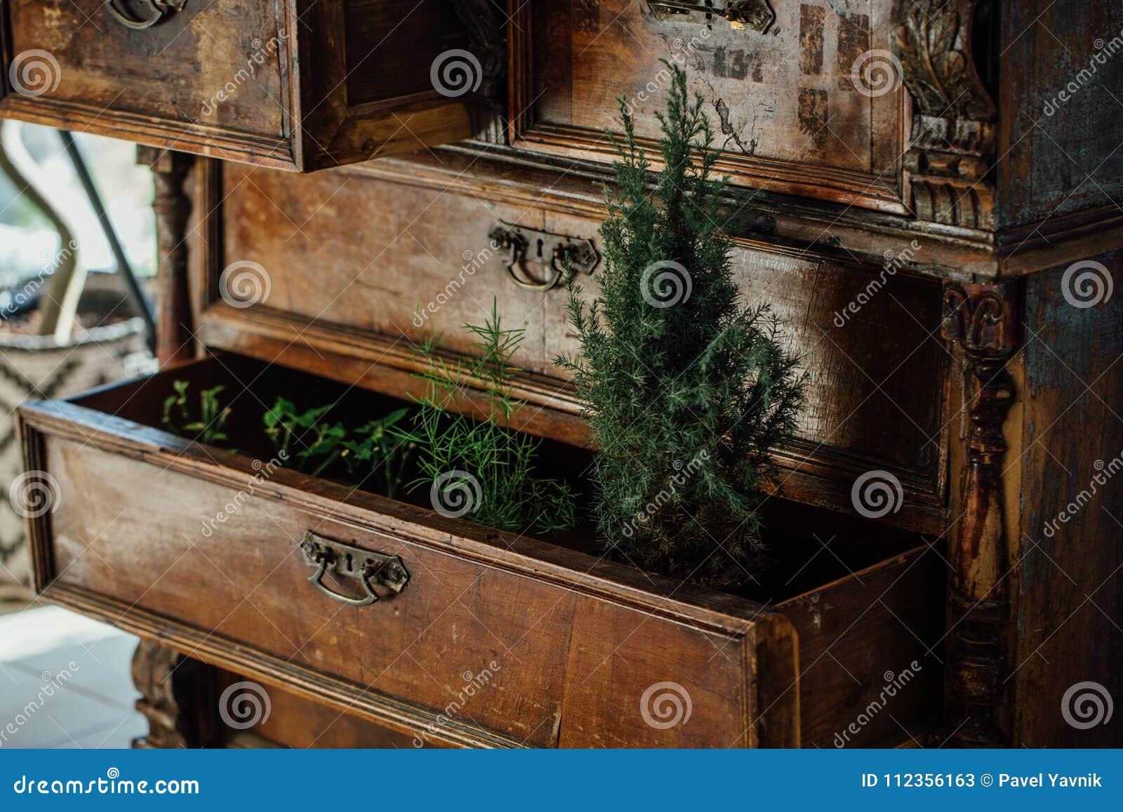 Bonito Pecho Medios Con Muebles De Cajones Inspiración - Muebles ...