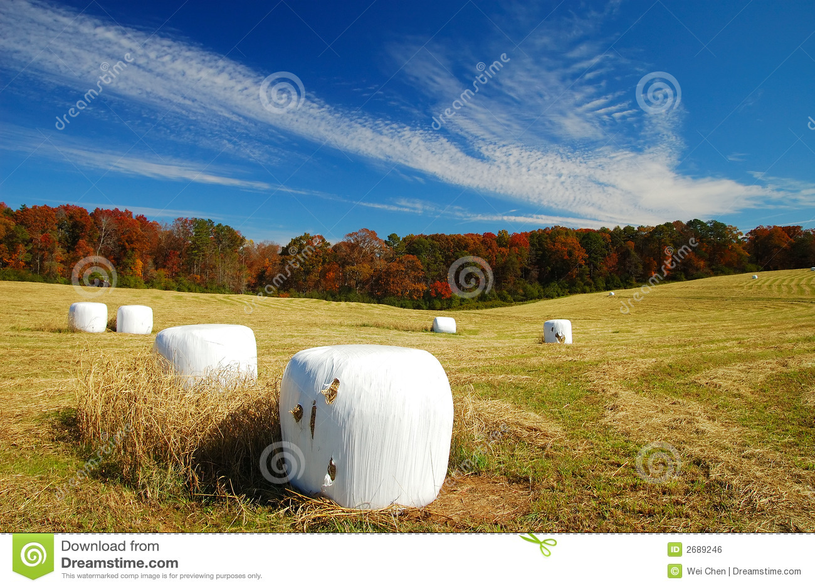 Helen jesienią rolnych jest sezon