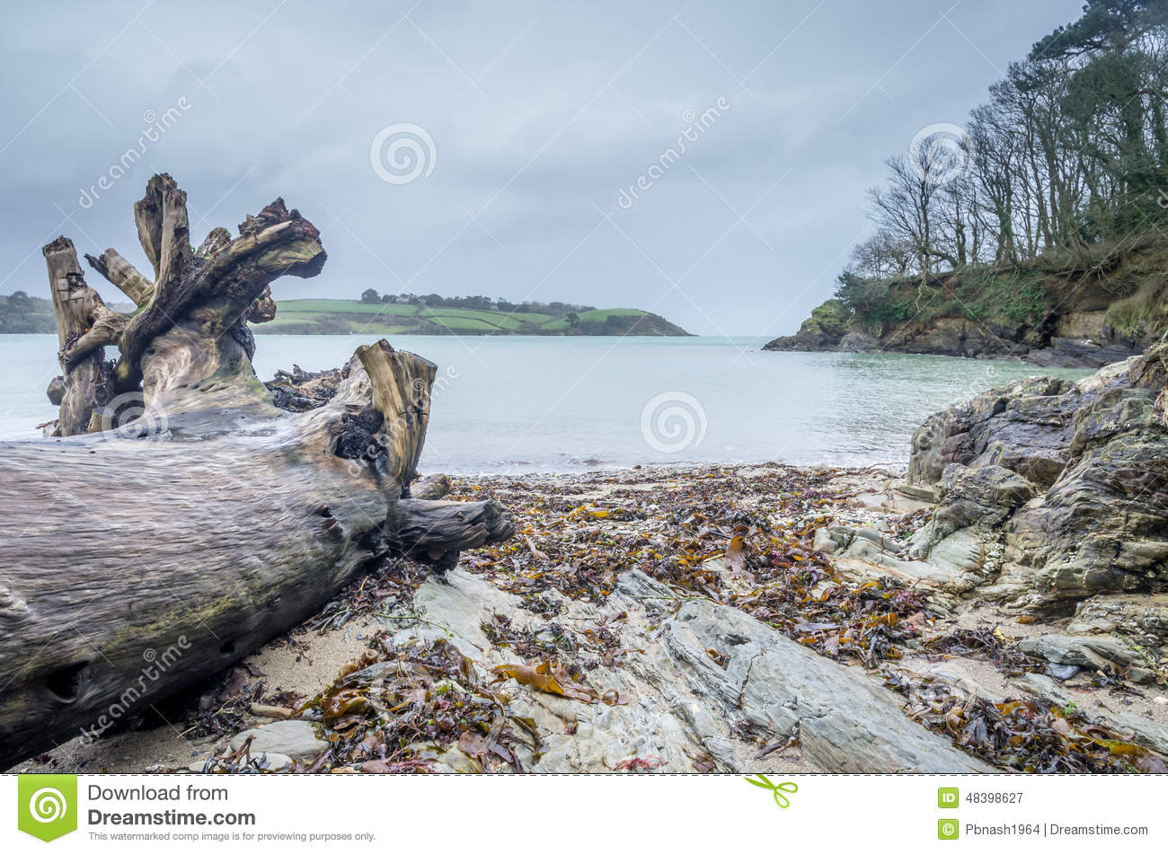 Download Helford Passage In Cornwall England Uk Stock Image