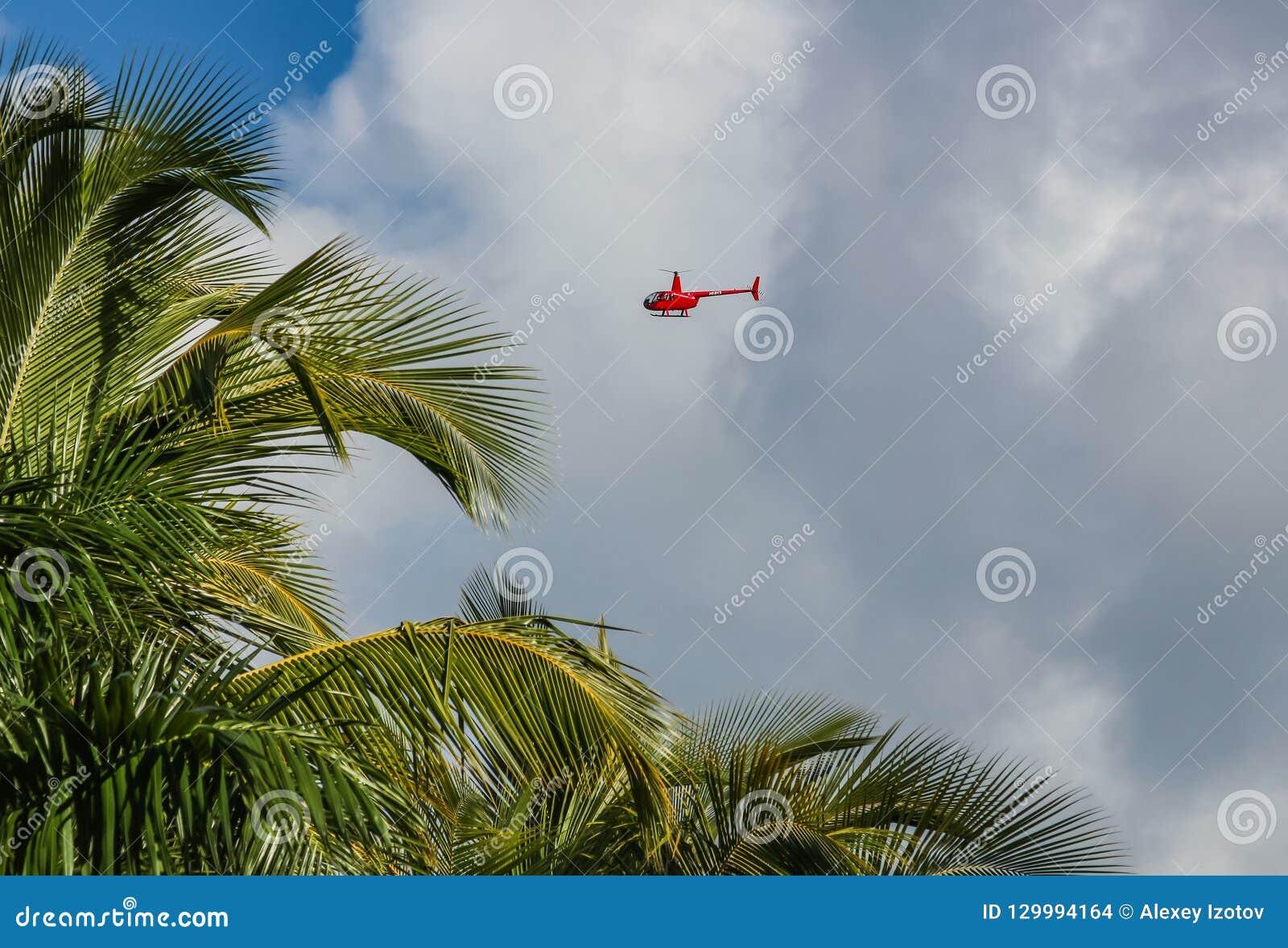 Helicóptero e palmeiras na praia de Catalonia Bavaro na República Dominicana
