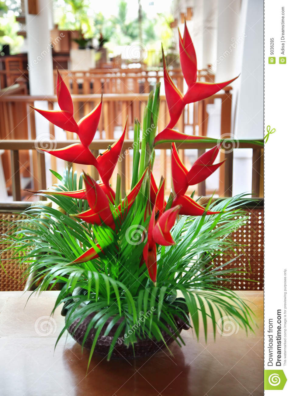 Heliconia stock image. Image of desk, blossoming ...