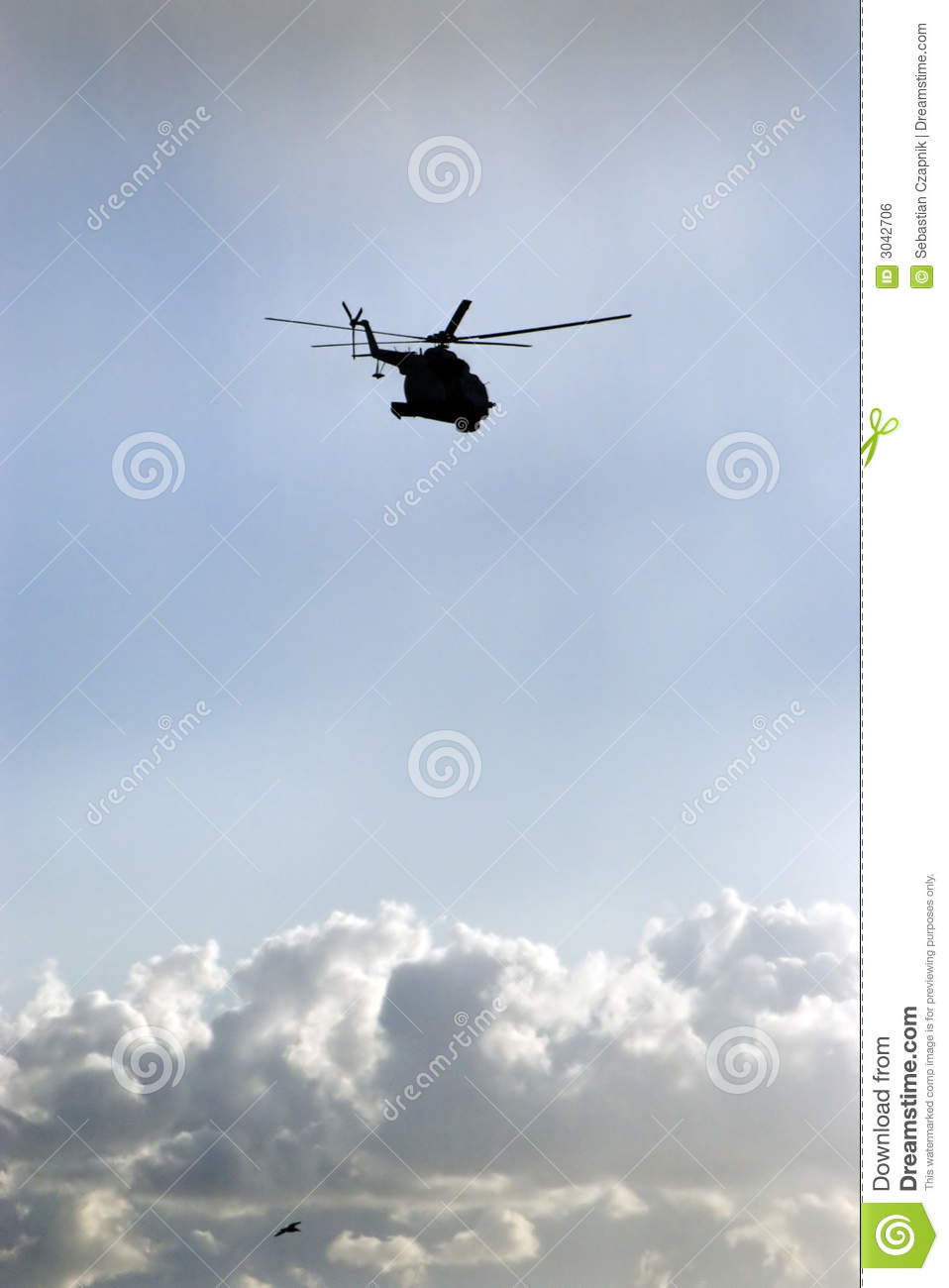 Helicopter and bird