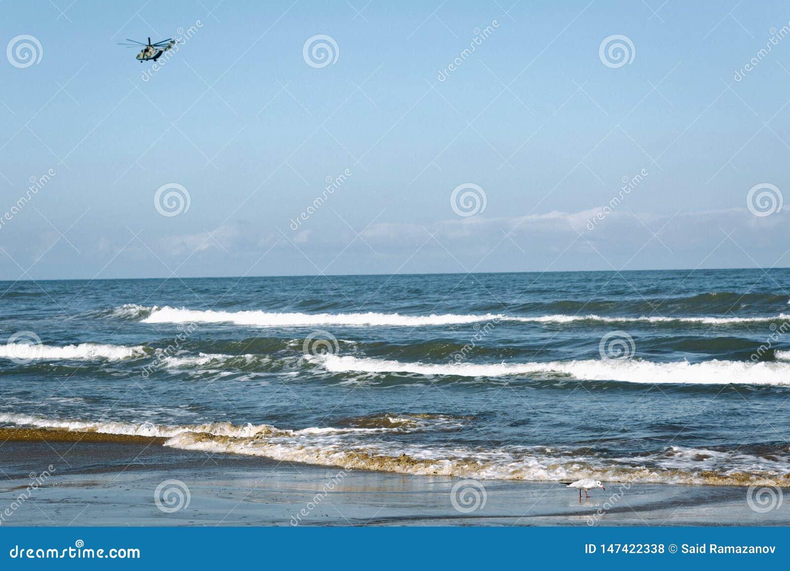 Helikopter over het overzees tegen de wolkenloze hemel