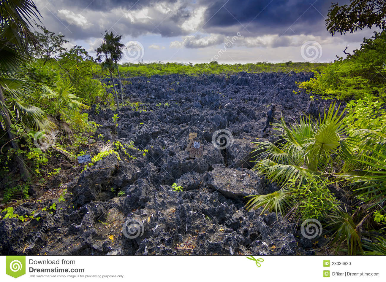 Download Hell on Earth stock photo. Image of grey, grand, hell - 28336830