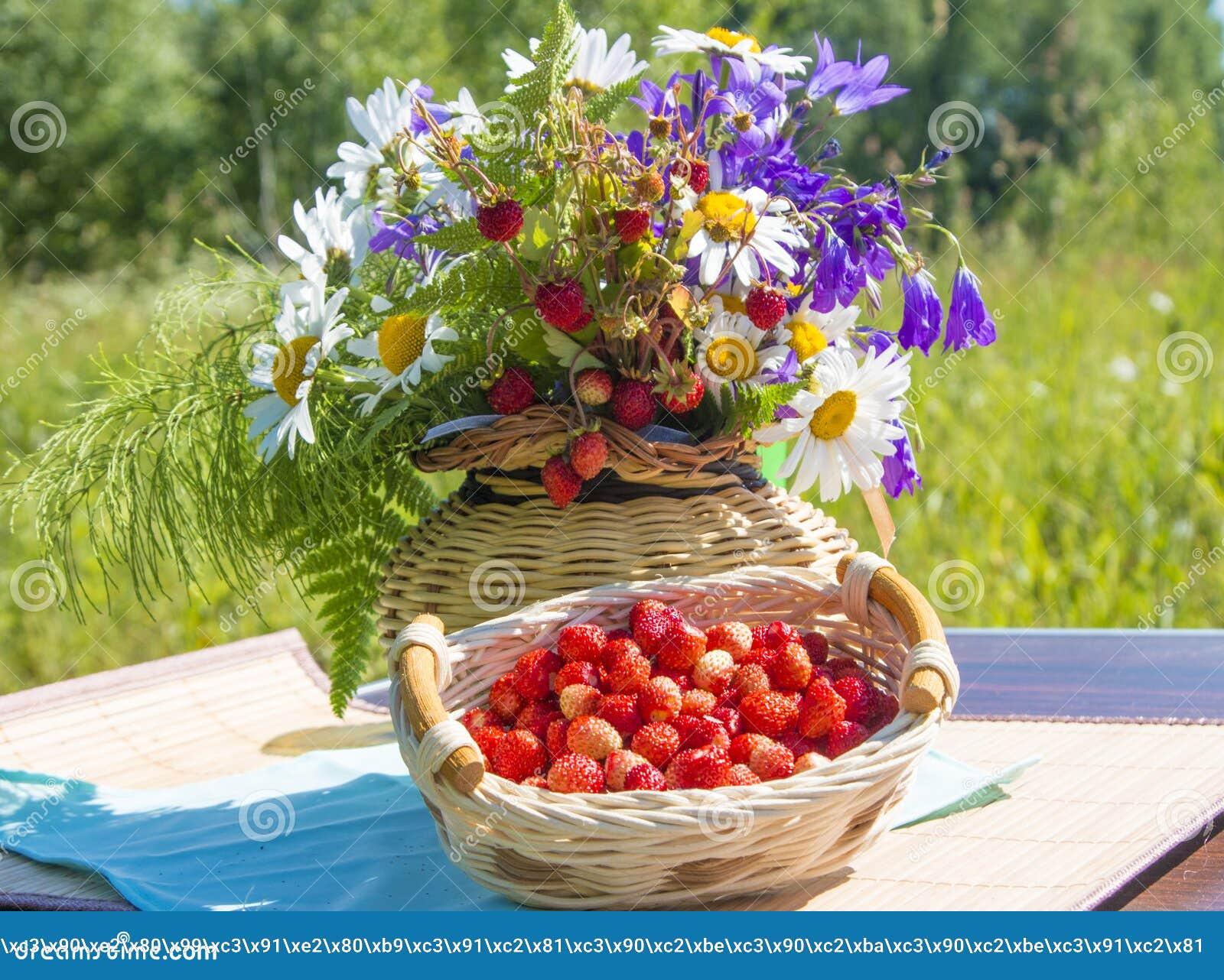 Heller Korb der Frucht und der Blume