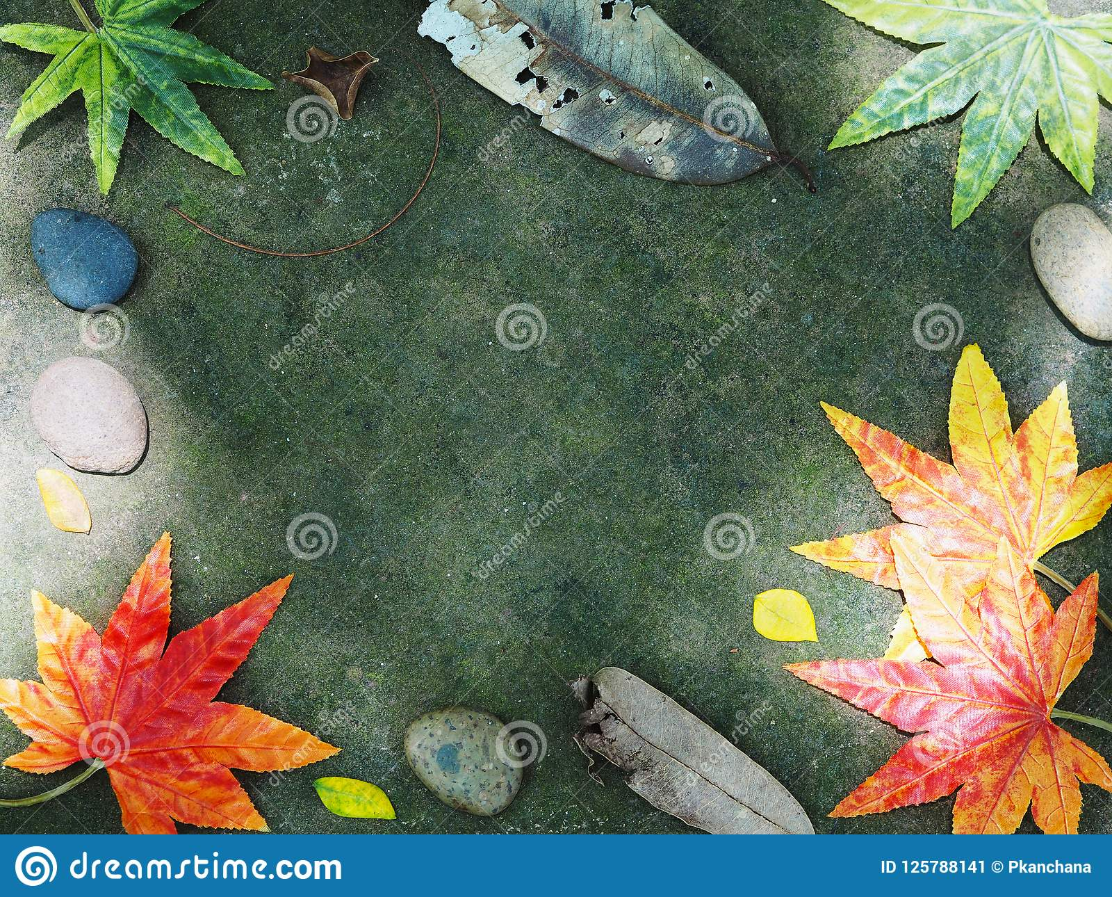 Hello Autumn Card Background Stock Image Image Of Space Frame