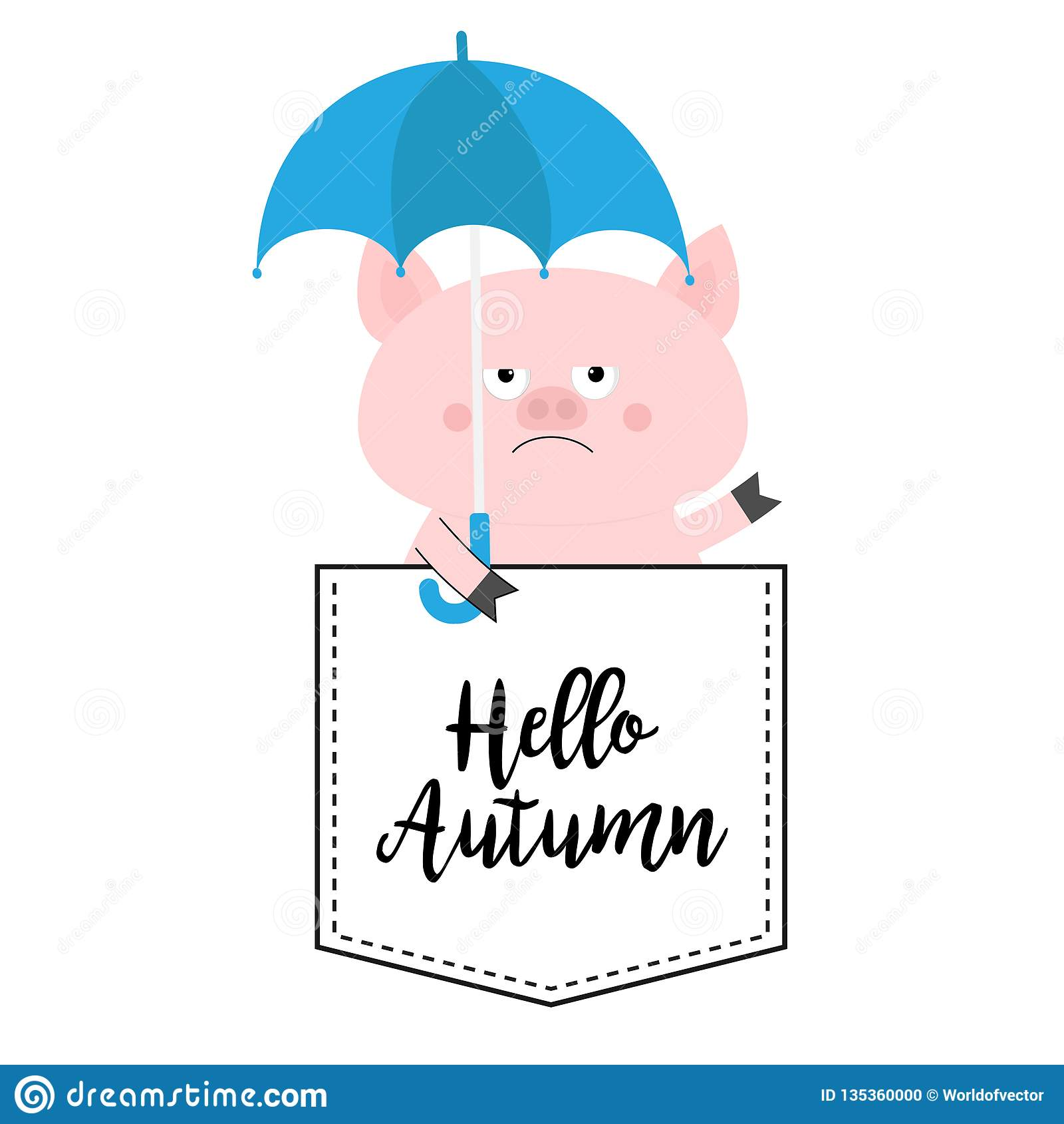 Hello autumn. Pig face head in the pocket. Umbrella. Cute cartoon animals. Piggy piglet character. Dash line. White and black