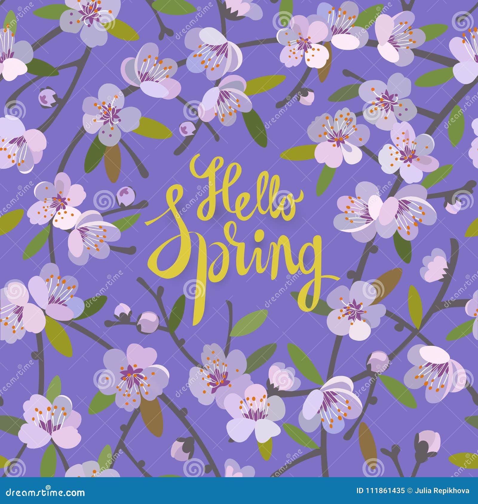 Hello fjädrar blom- bakgrund för vårsäsong med blommande äppleträdfilialer Befordranerbjudande med blom- garnering