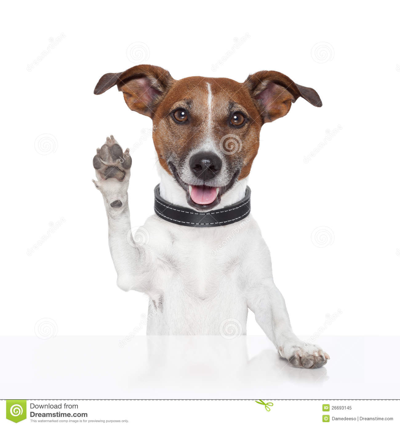states with no income tax map with Royalty Free Stock Photo Hello Goodbye High Five Dog Image26693145 on Which States Are Best For Retirement further Tax Day 2016 likewise Megazine additionally Stock Photography File Tax Return Image23086762 besides 1809744.