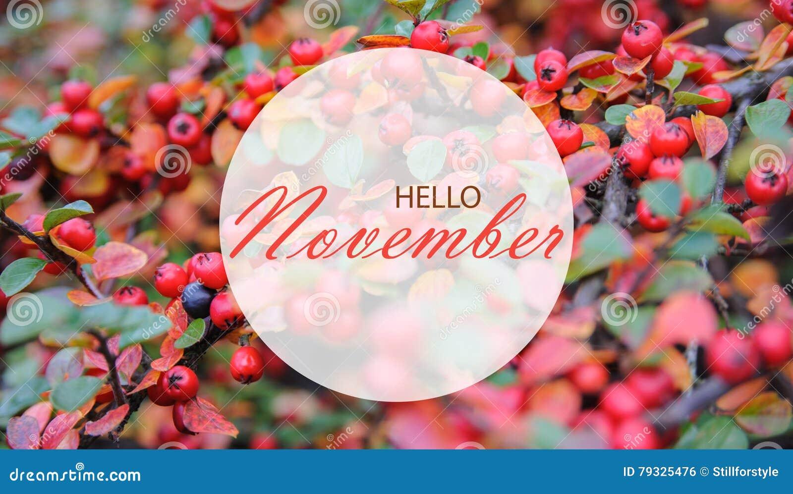 Hello November Wallpaper Stock Photo Image Of Autumn 79325476