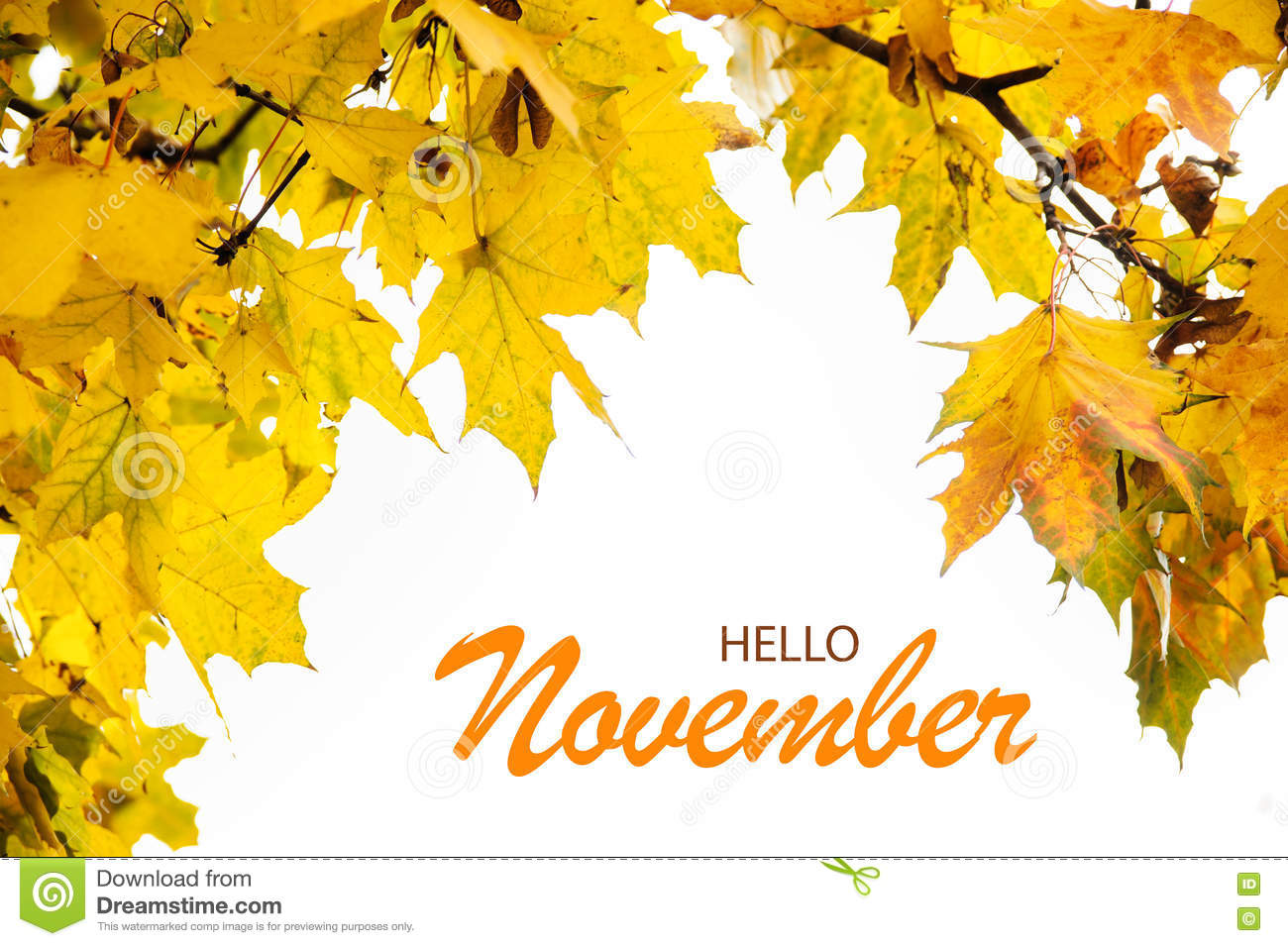 Hello November Wallpaper With Yellow Leaves Stock Photo