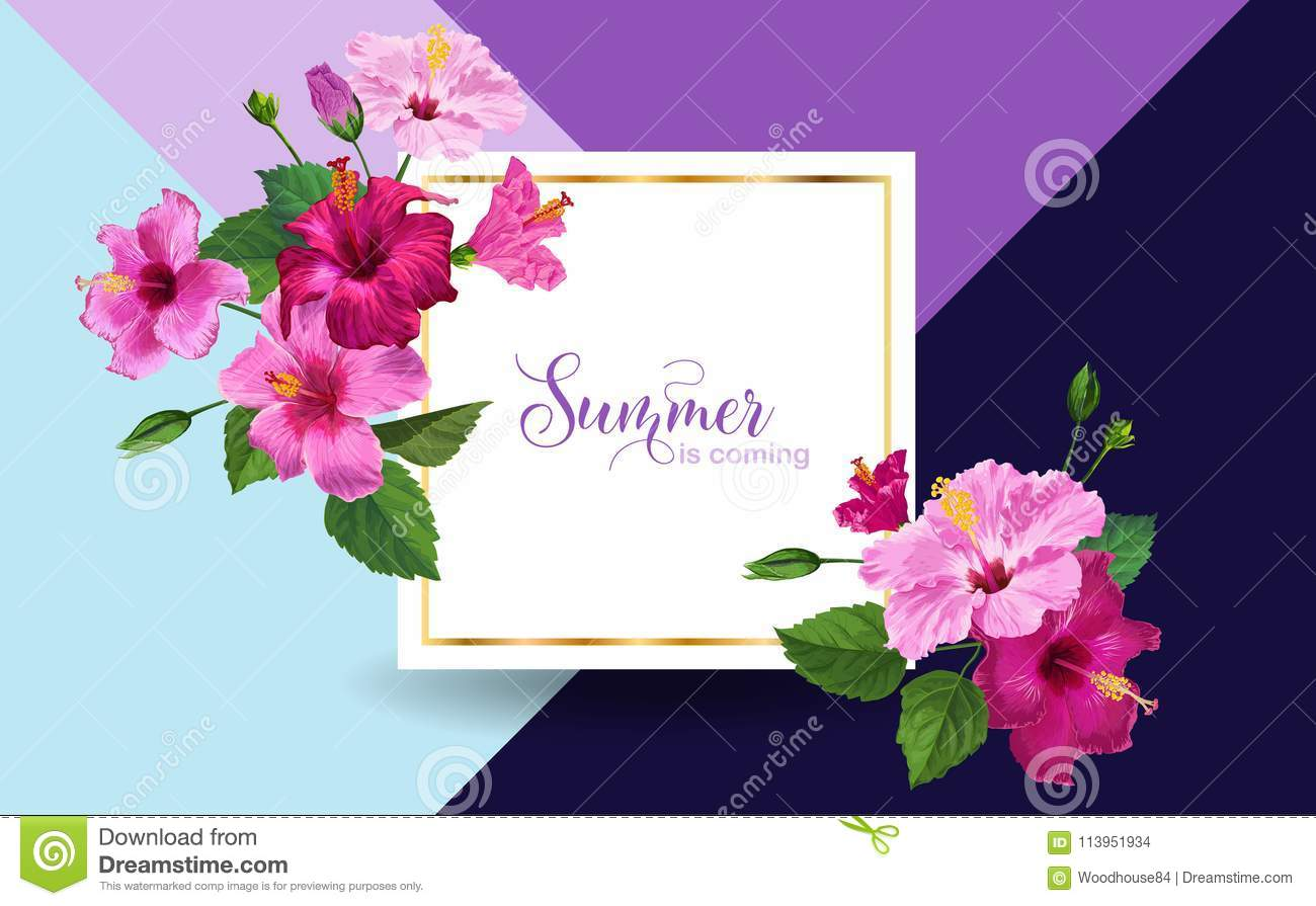 Hello summer poster floral design with pink hibiscus flowers for floral design with pink hibiscus flowers for party invitation banner flyer sale advertising tropical botanical background vector illustration izmirmasajfo