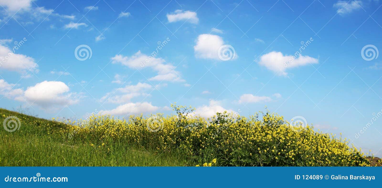 Hemel en Gras - brede mening