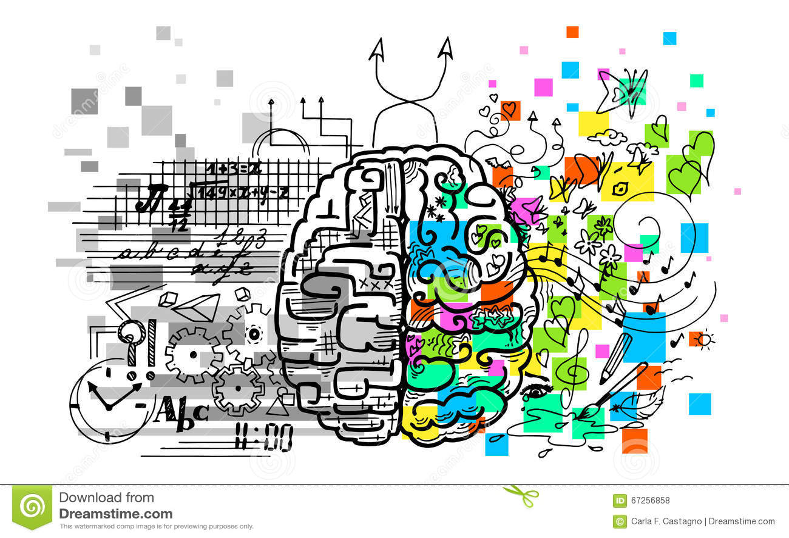 Hemisférios do cérebro