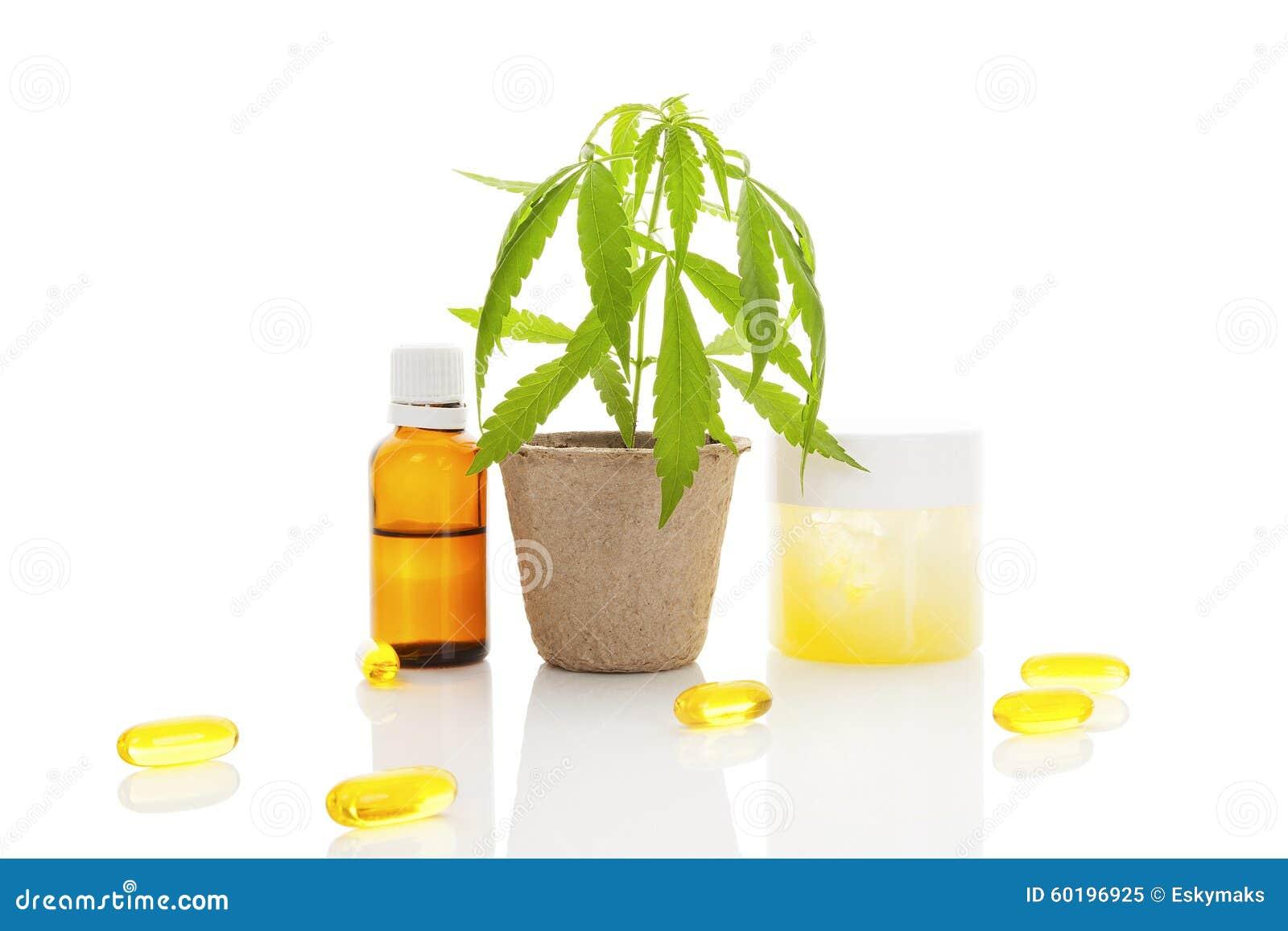 Natural Oil Free Moisturizer