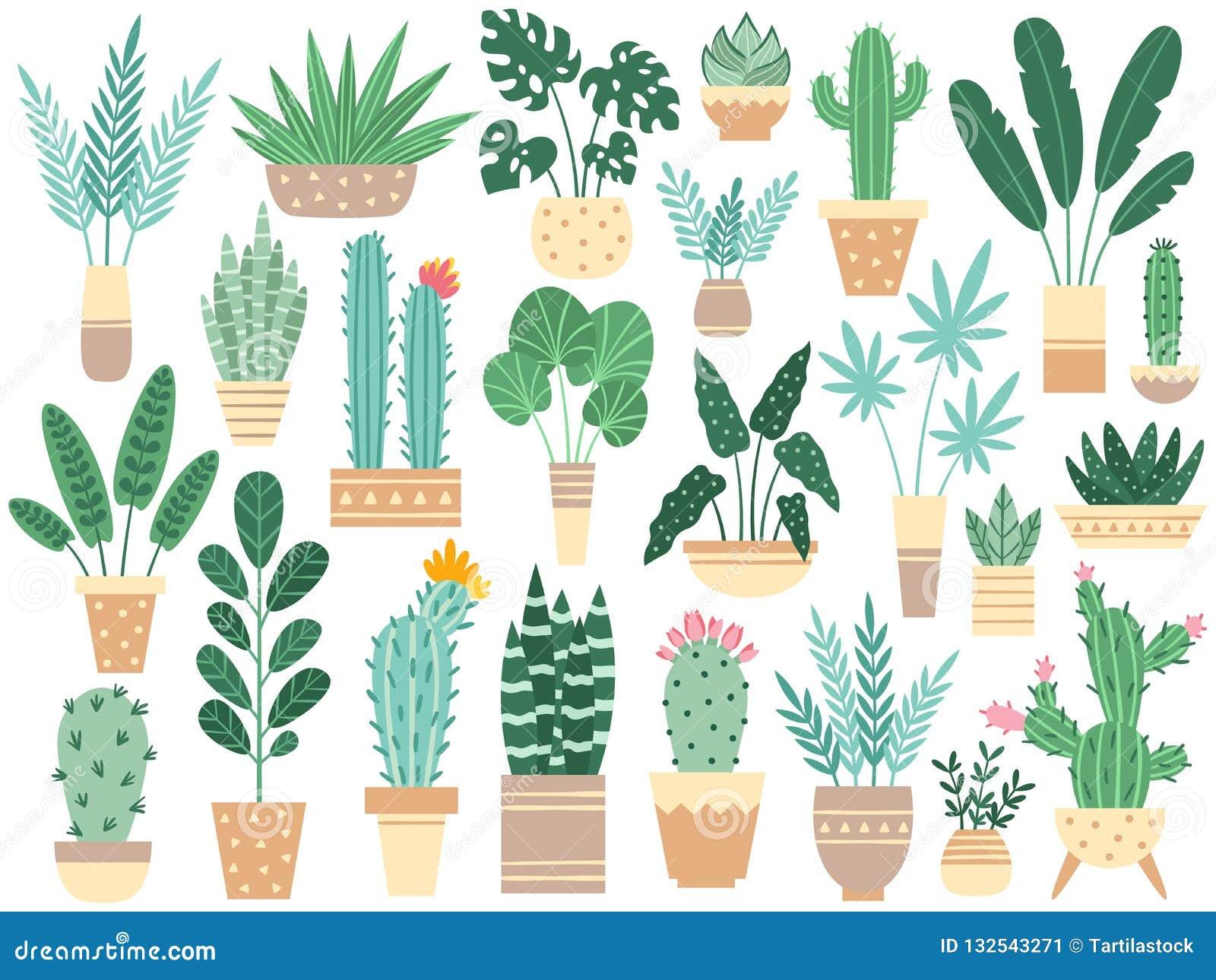 Hemväxter i krukor Naturhouseplants, garnering lade in houseplanten och blommaväxten som planterar i den isolerade krukavektorn