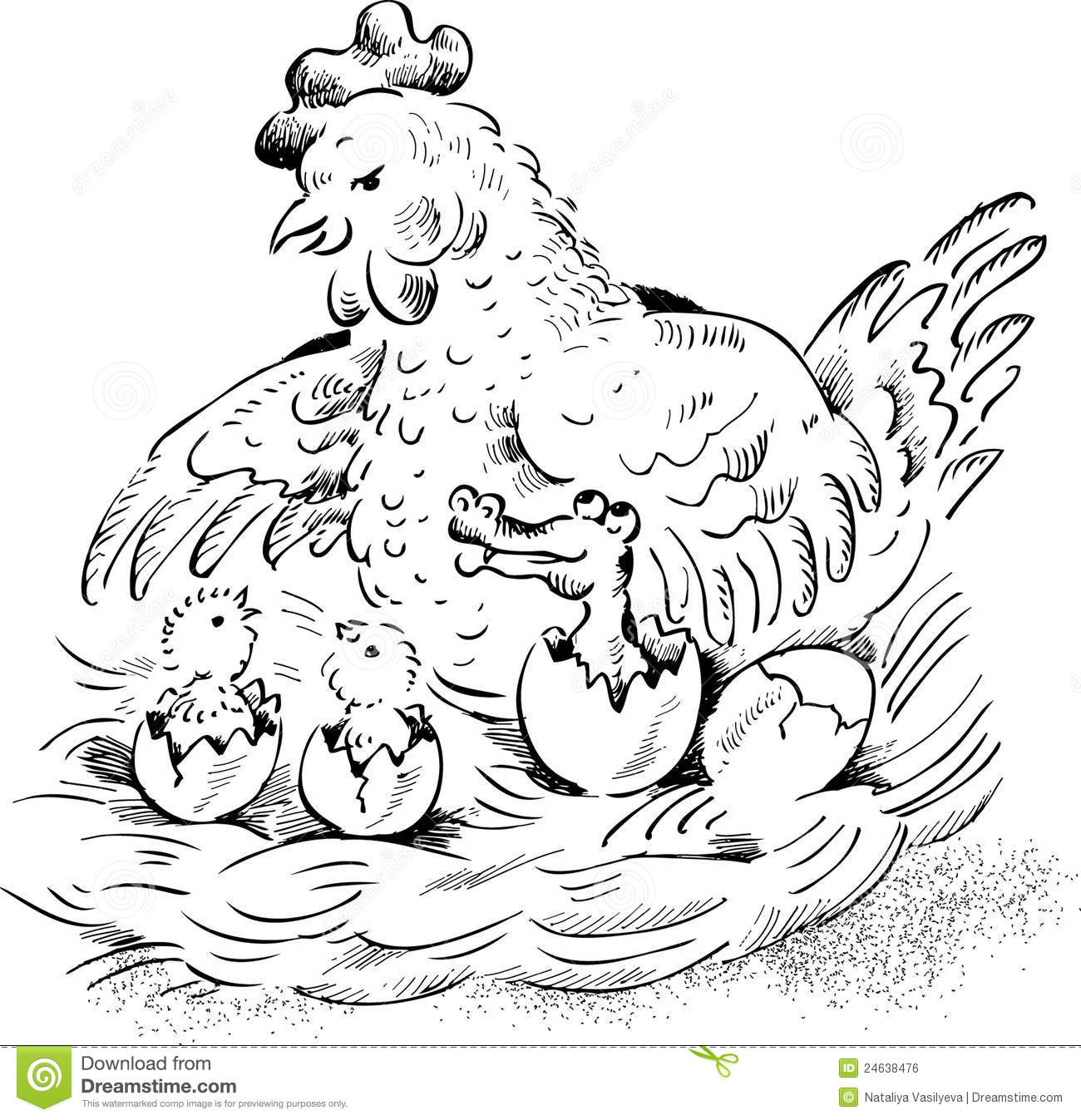 sketch of a hatching stock photography image 14760602