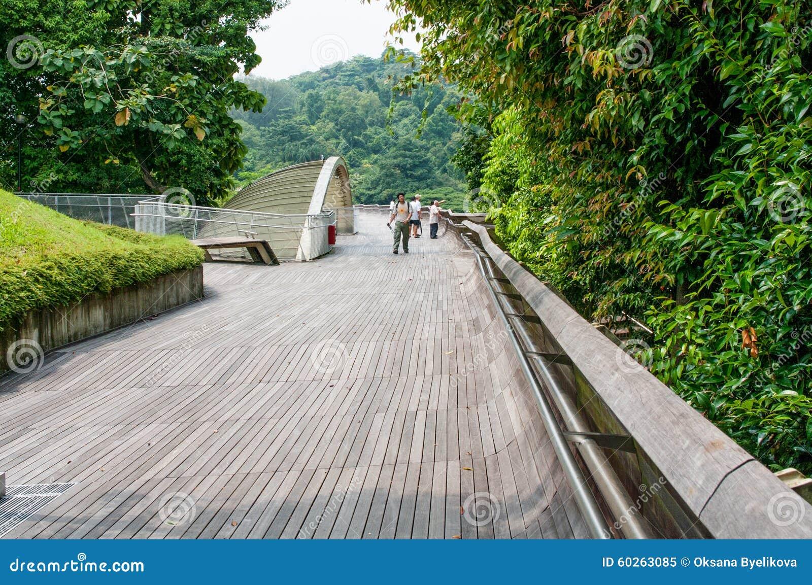Henderson Waves är den högsta fot- bron i Singapore