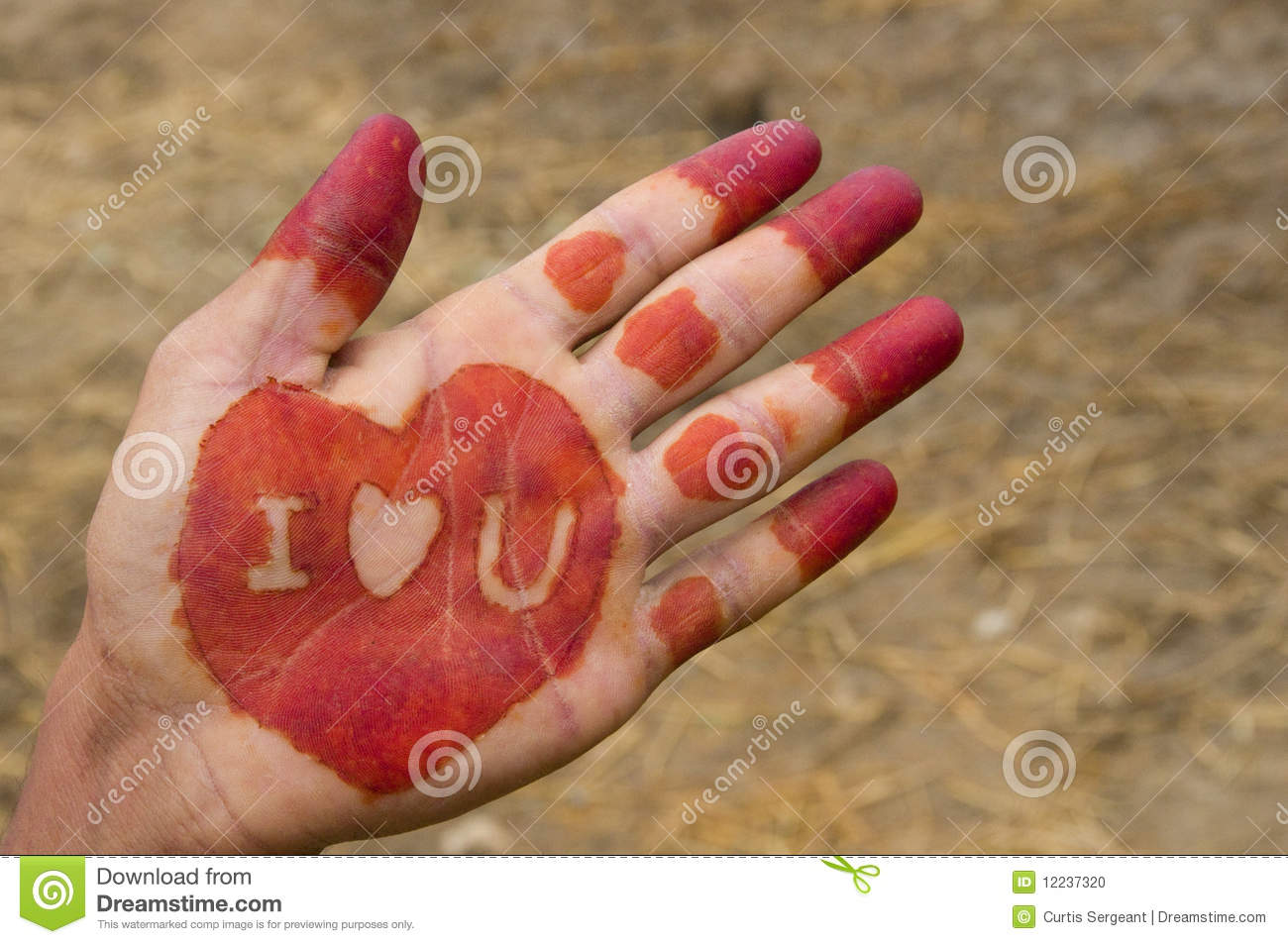 Mehndi Hands In Dream : Henna hand stock photo image of decoration message