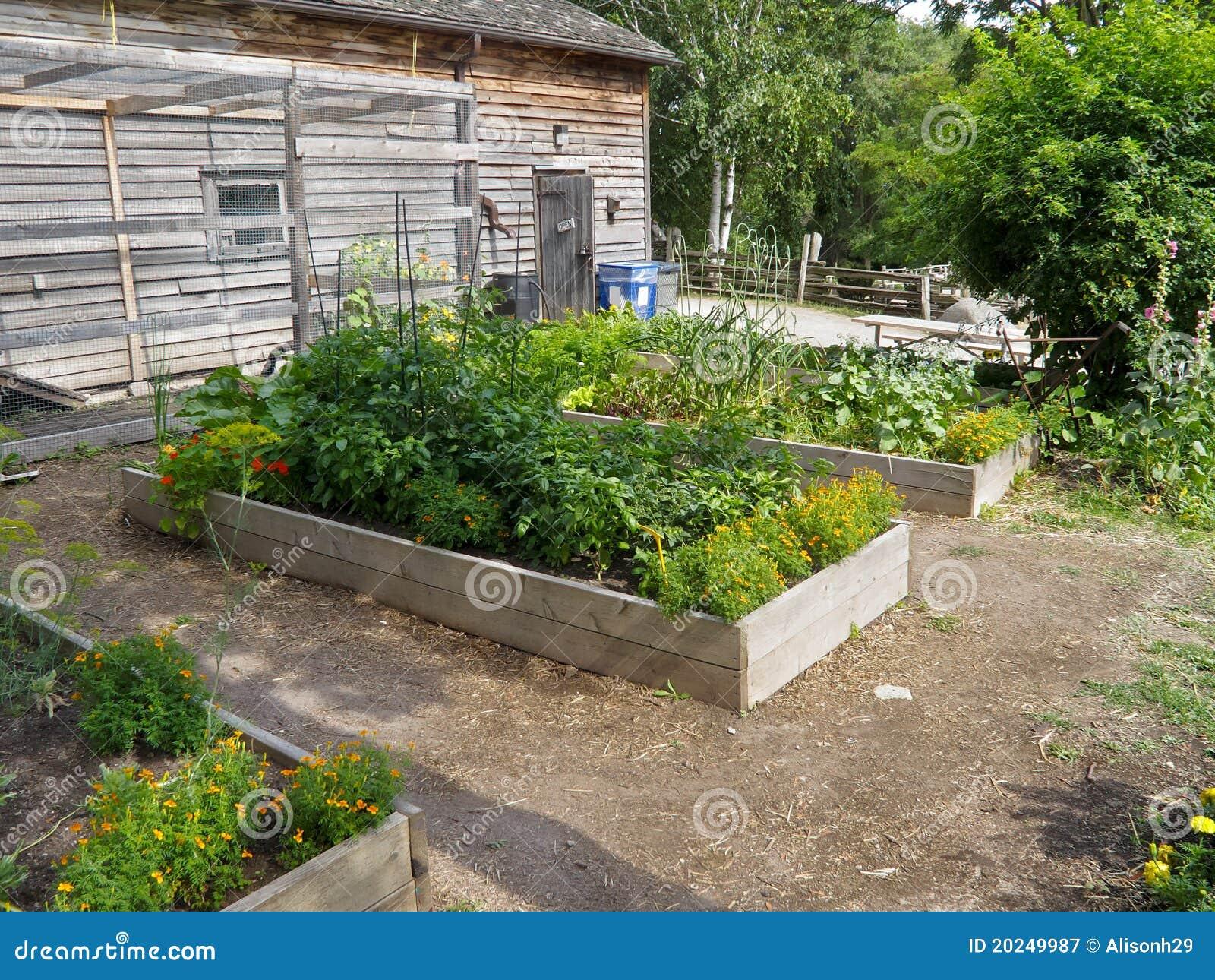 Herb Garden Stock Image Image Of Cultivation Landscaper