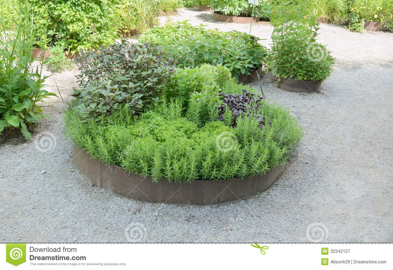 Herb Garden Royalty Free Stock Photography Image 32342127