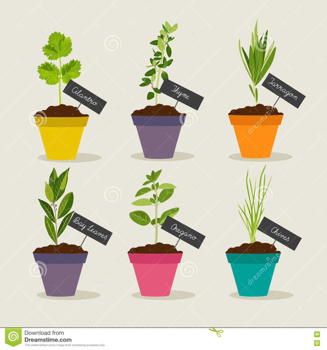 Royalty Free Vector. Download Herb Garden With Pots ...