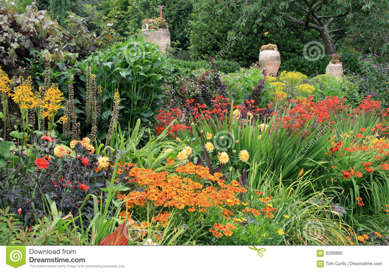 Herbaceous Border Stock Photo Image Of Grass Flora Flowers 6099860