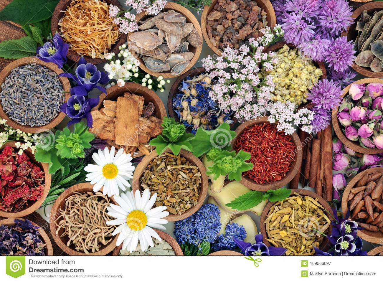 herbal medicine herbs flowers herbal medicine herbs flowers used chinese natural alternative remedies 109566097 - How to Avoid Acquiring Liver Diseases