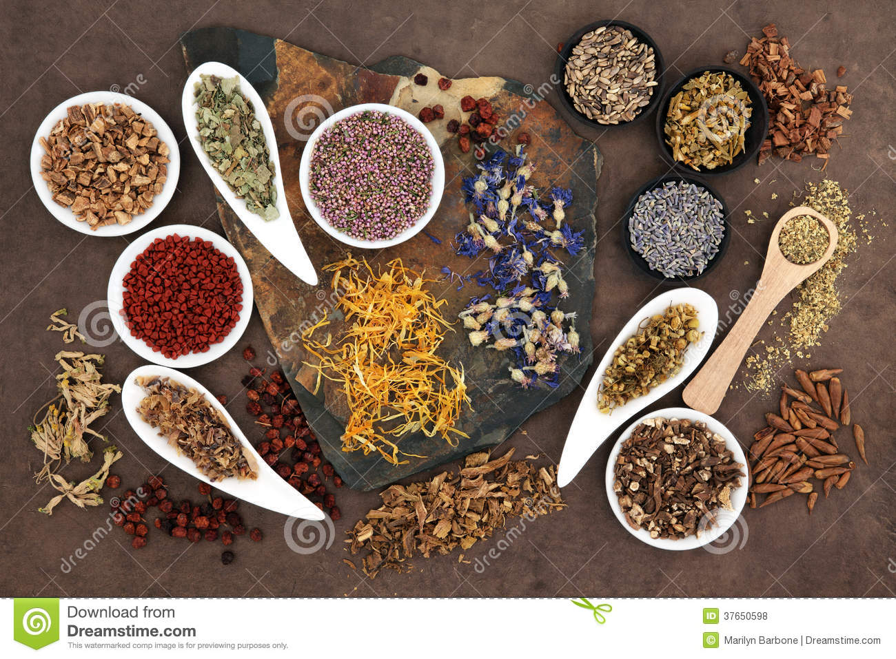 thesis on herbal medicine A study of alternative medicine in the philippines is others are self-administered remedies: folkloric, herbal, sometimes pharmacy-based.