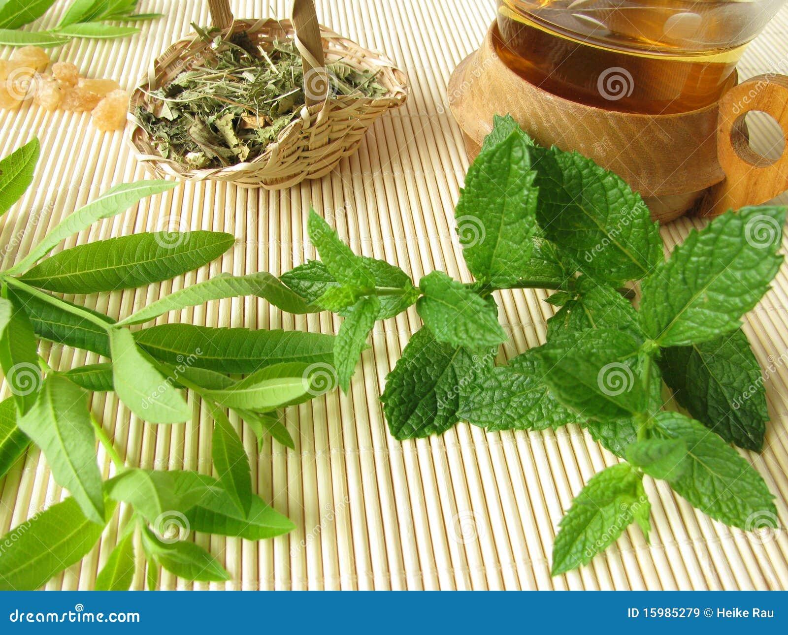 Herbal Tea With Lemon Verbena And Moroccan Mint Royalty ...