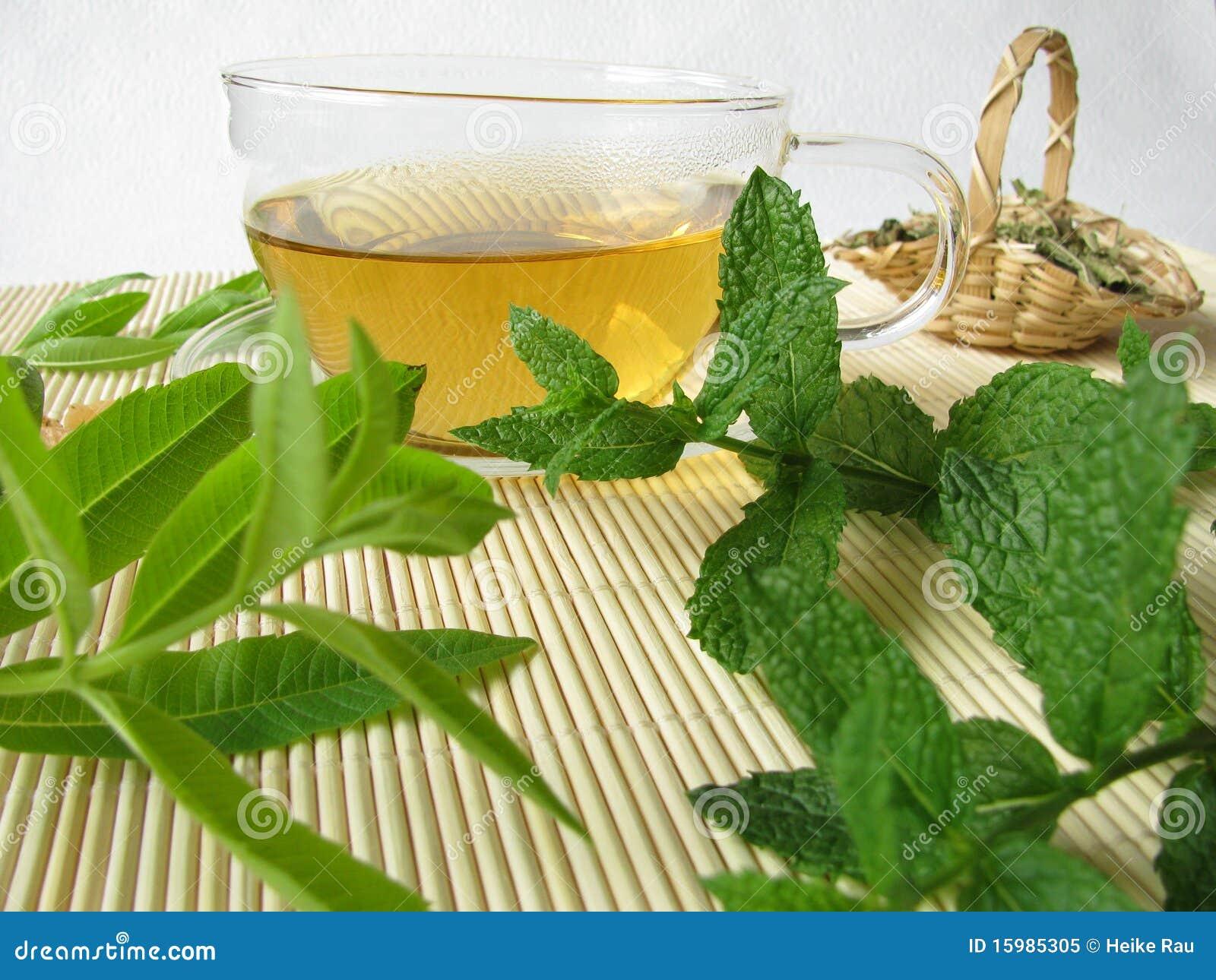 Herbal Tea With Lemon Verbena And Moroccan Mint Stock ...