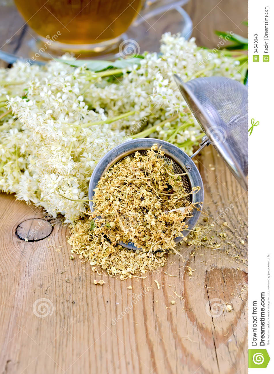 Meadowsweet Flower - Filipendula ulmaria Dried Leaf/Flower ...