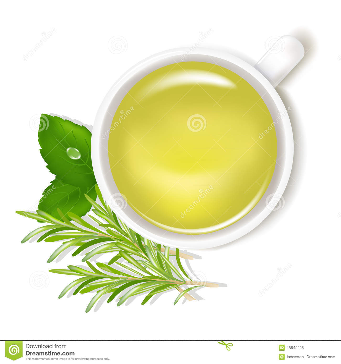 Parsley Illustration Herbal Tea. Vector Roy...